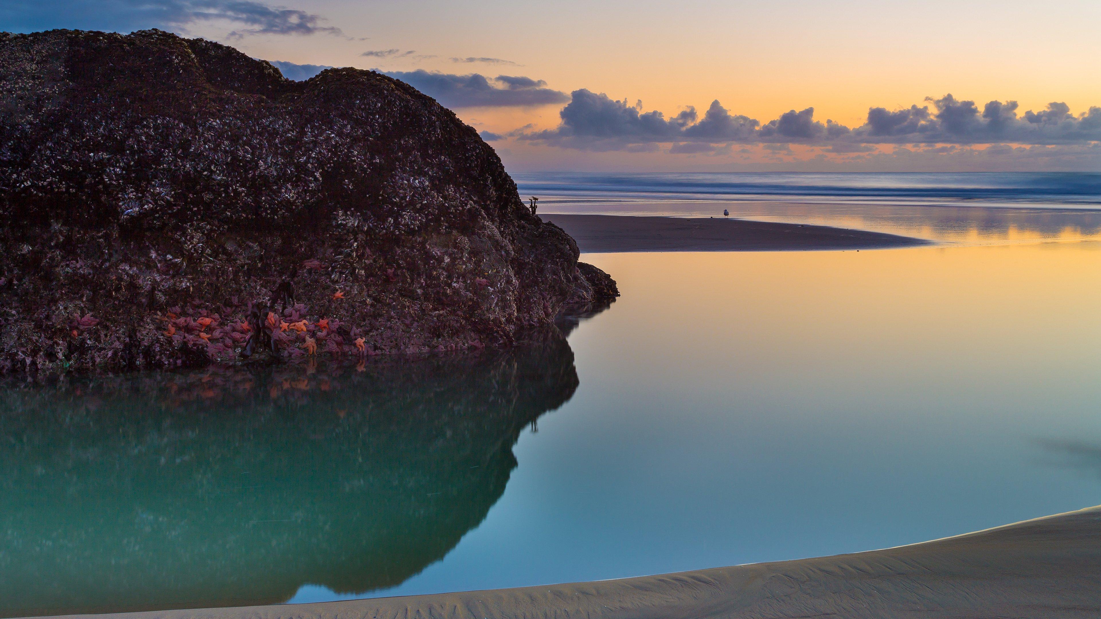 Wallpaper Bandon Beach at sunset