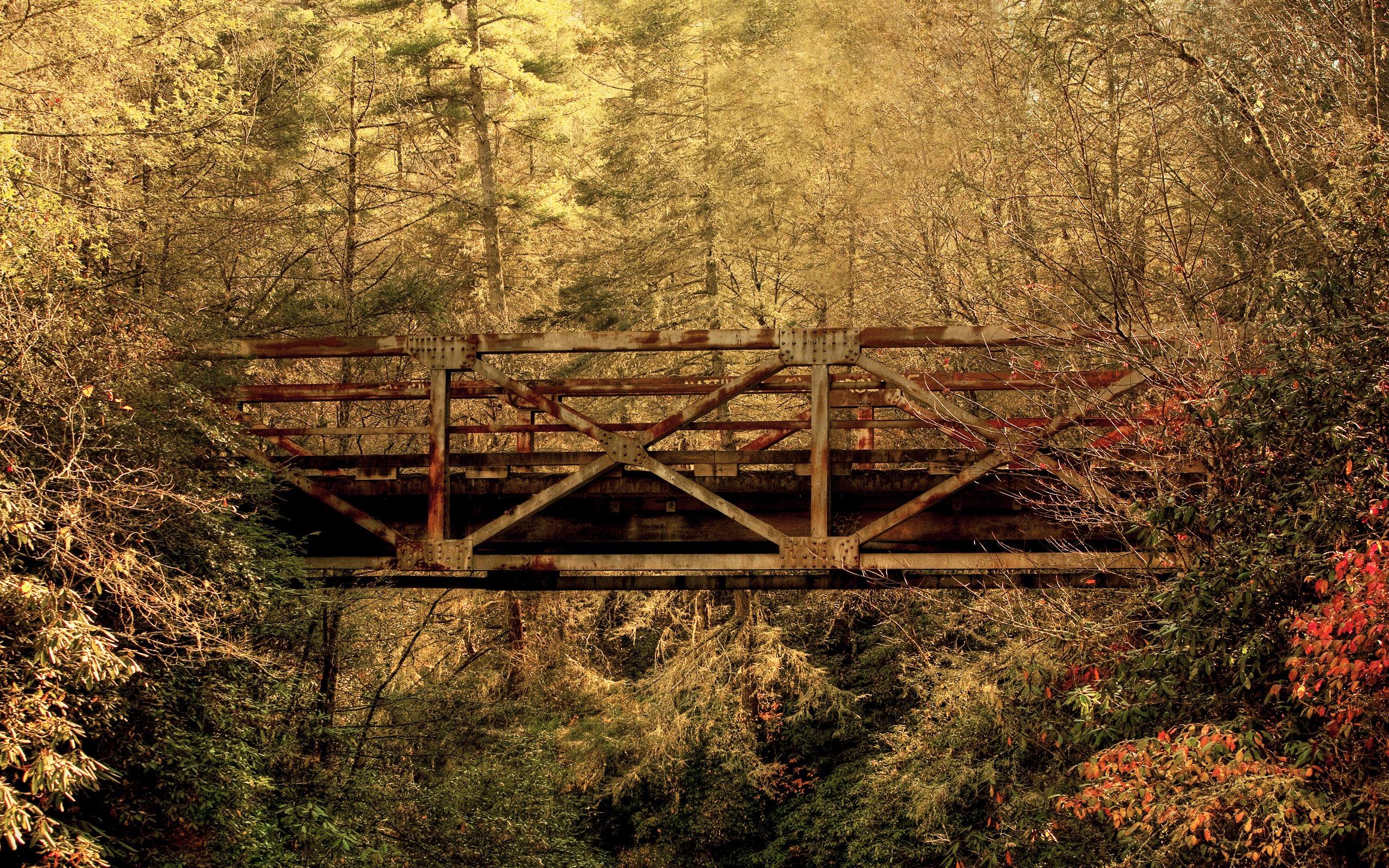 Fondos de pantalla Puente en bosque de otoño