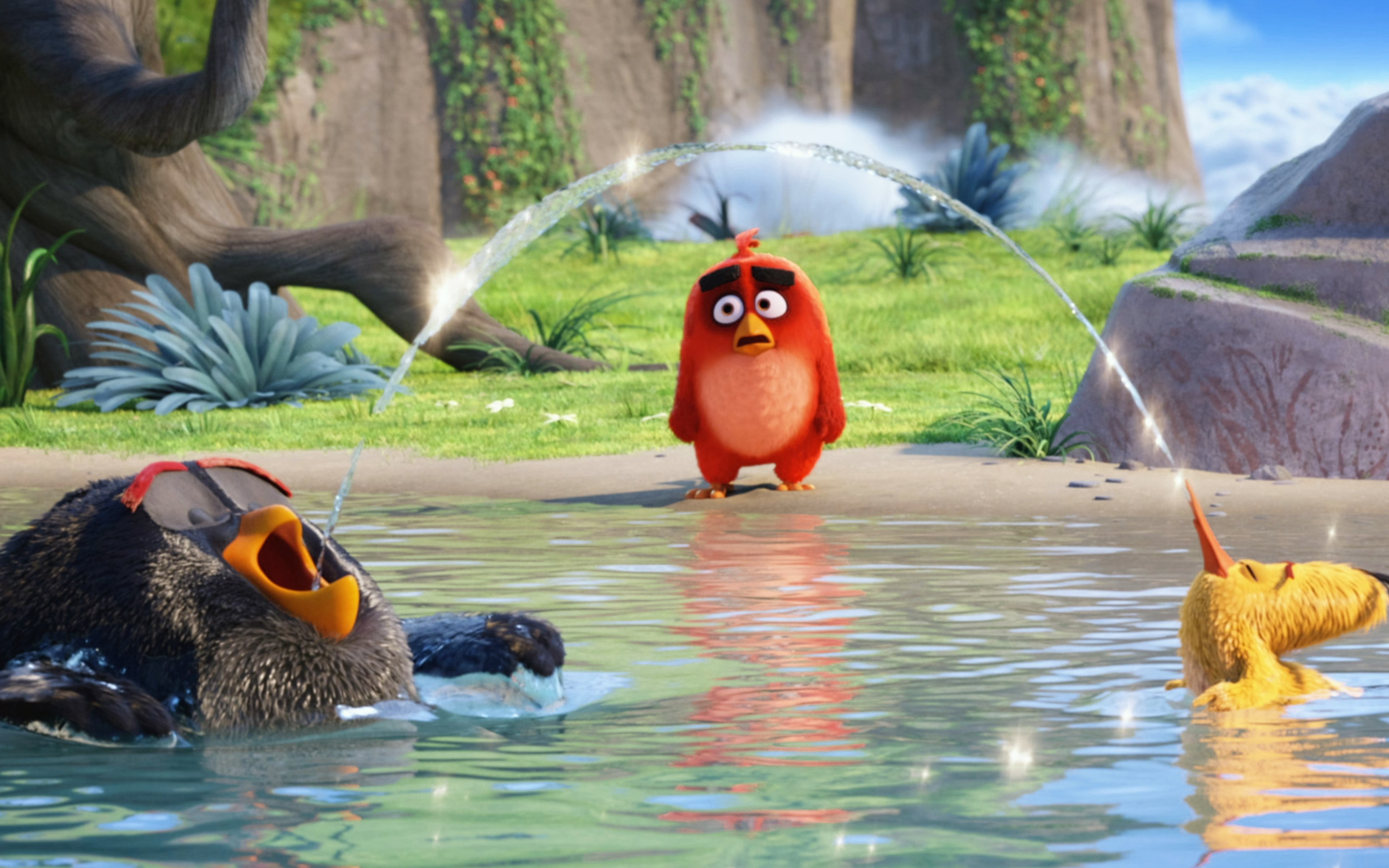 Wallpaper Red, Chuck and Bomb from  Angry Birds in the water