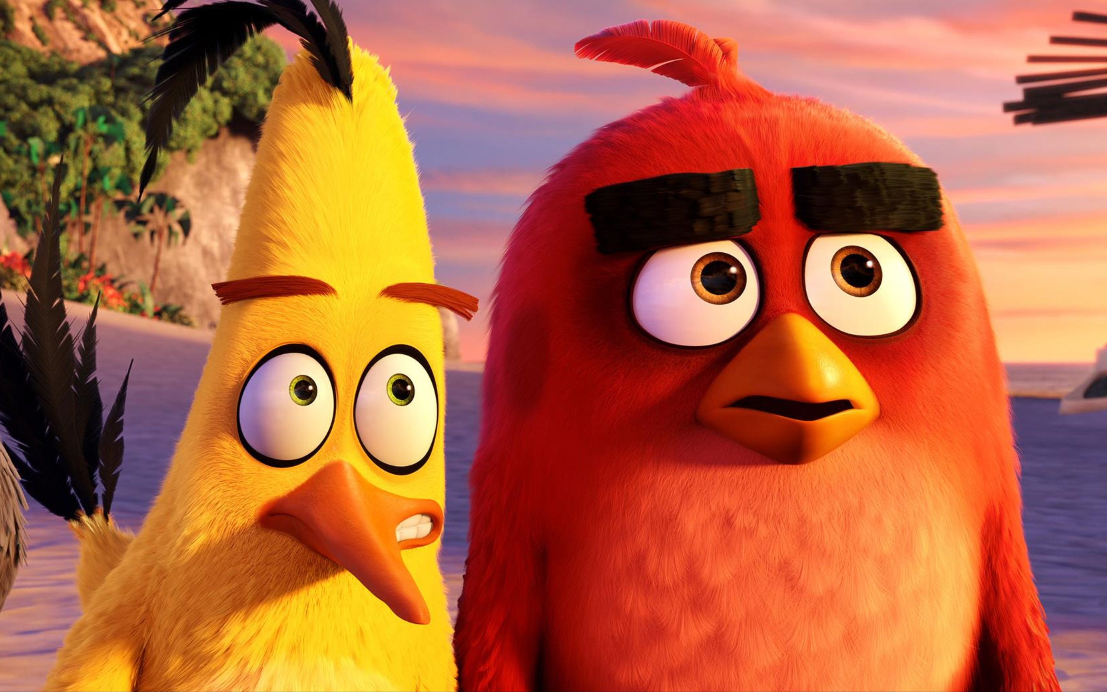 Wallpaper Red and Chuck in Angry Birds