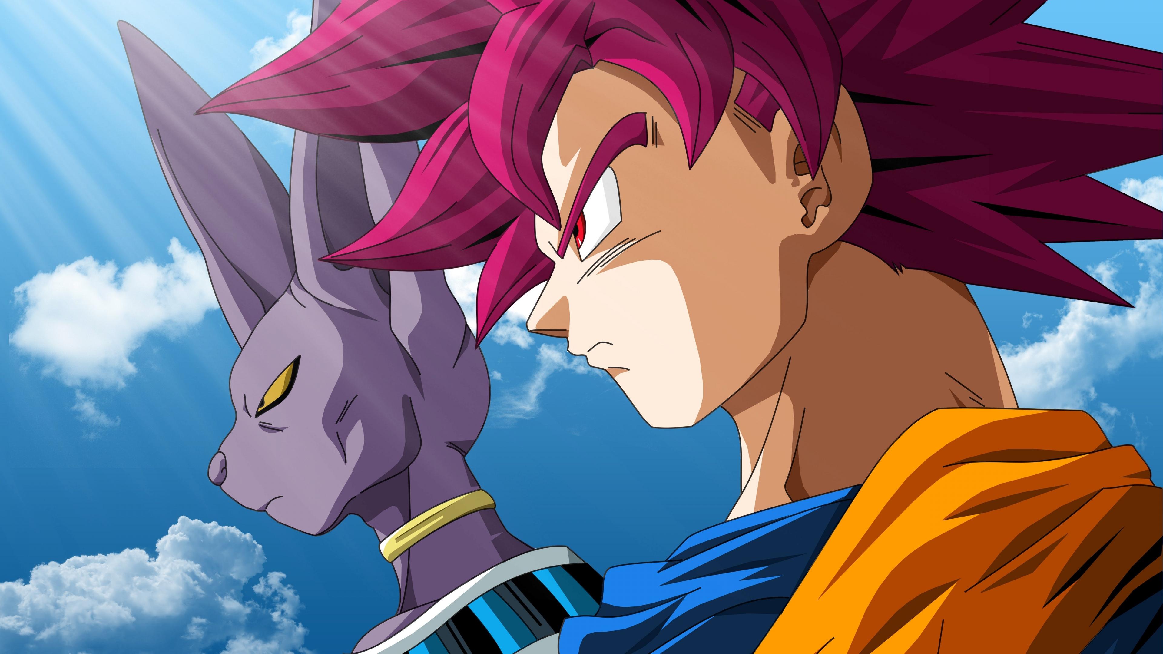 Beerus And Goku Super Saiyan God Anime Wallpaper 5k Ultra Hd Id 3046