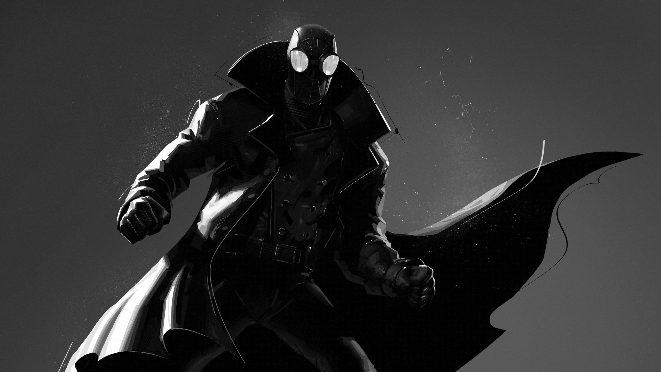 Spider Man Noir In Spider Man Into The Spider Verse