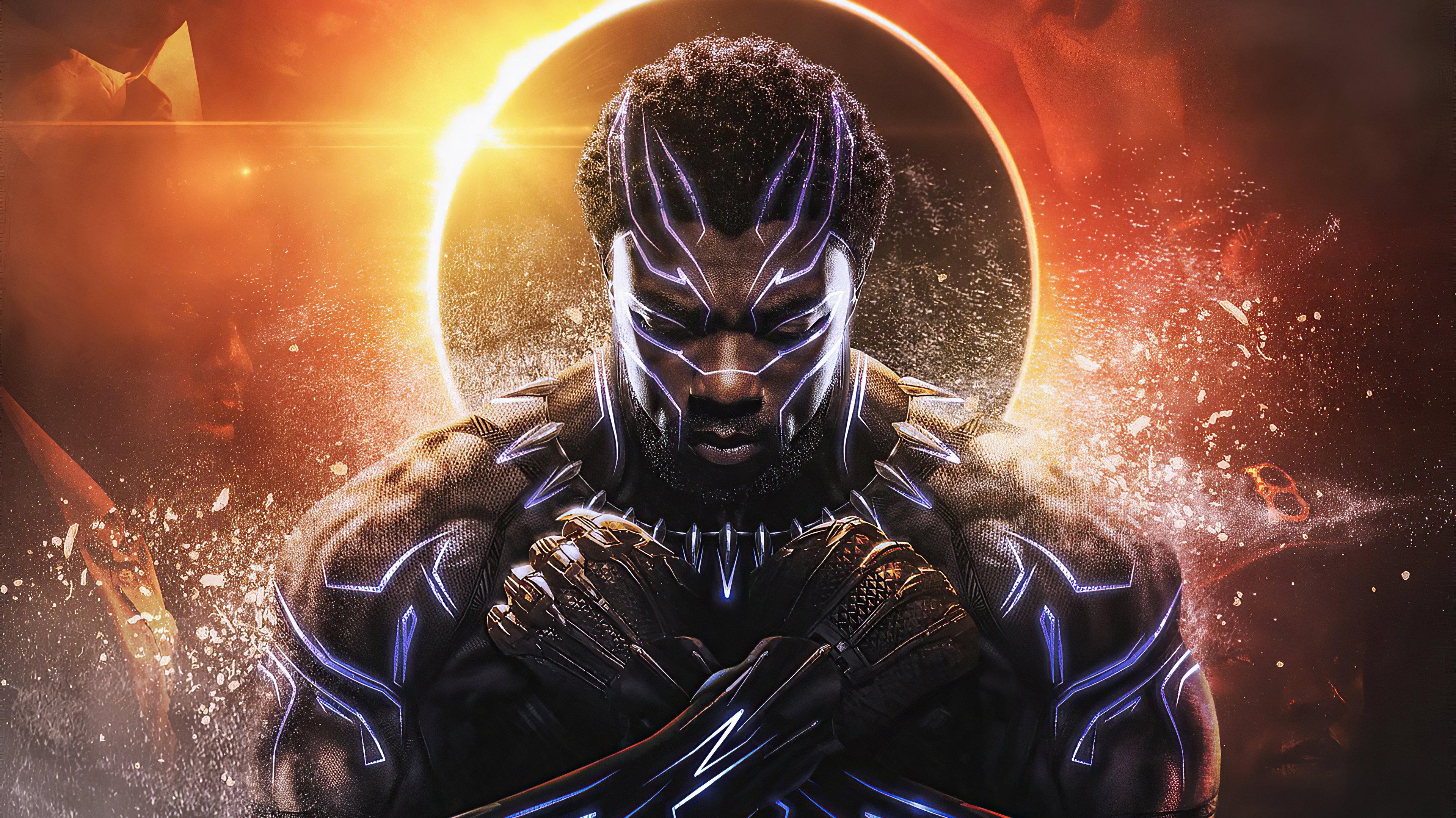 Fondos de pantalla Rey de Wakanda Pantera Negra