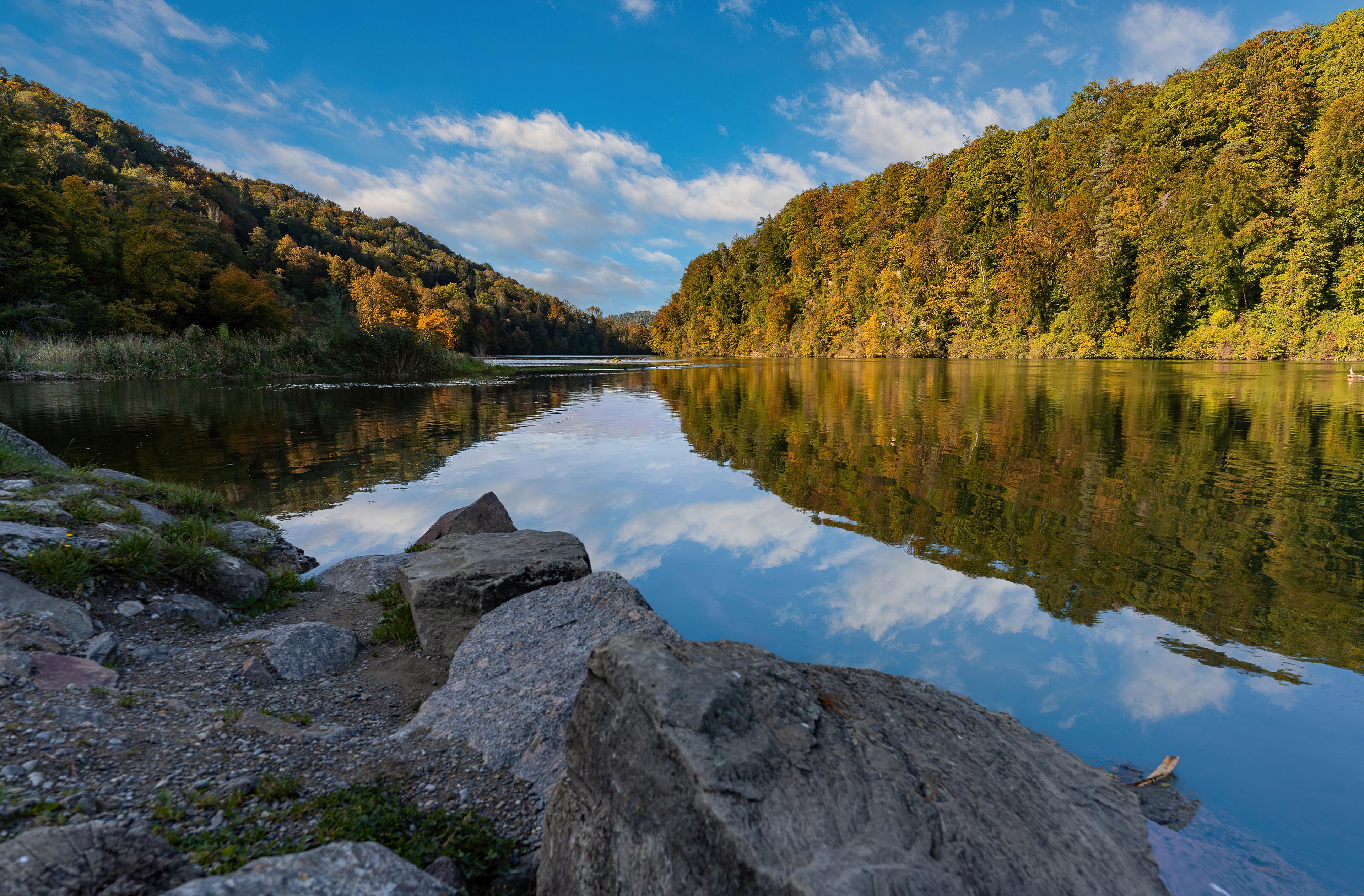 Fondos de pantalla Rio en el bosque en Suiza
