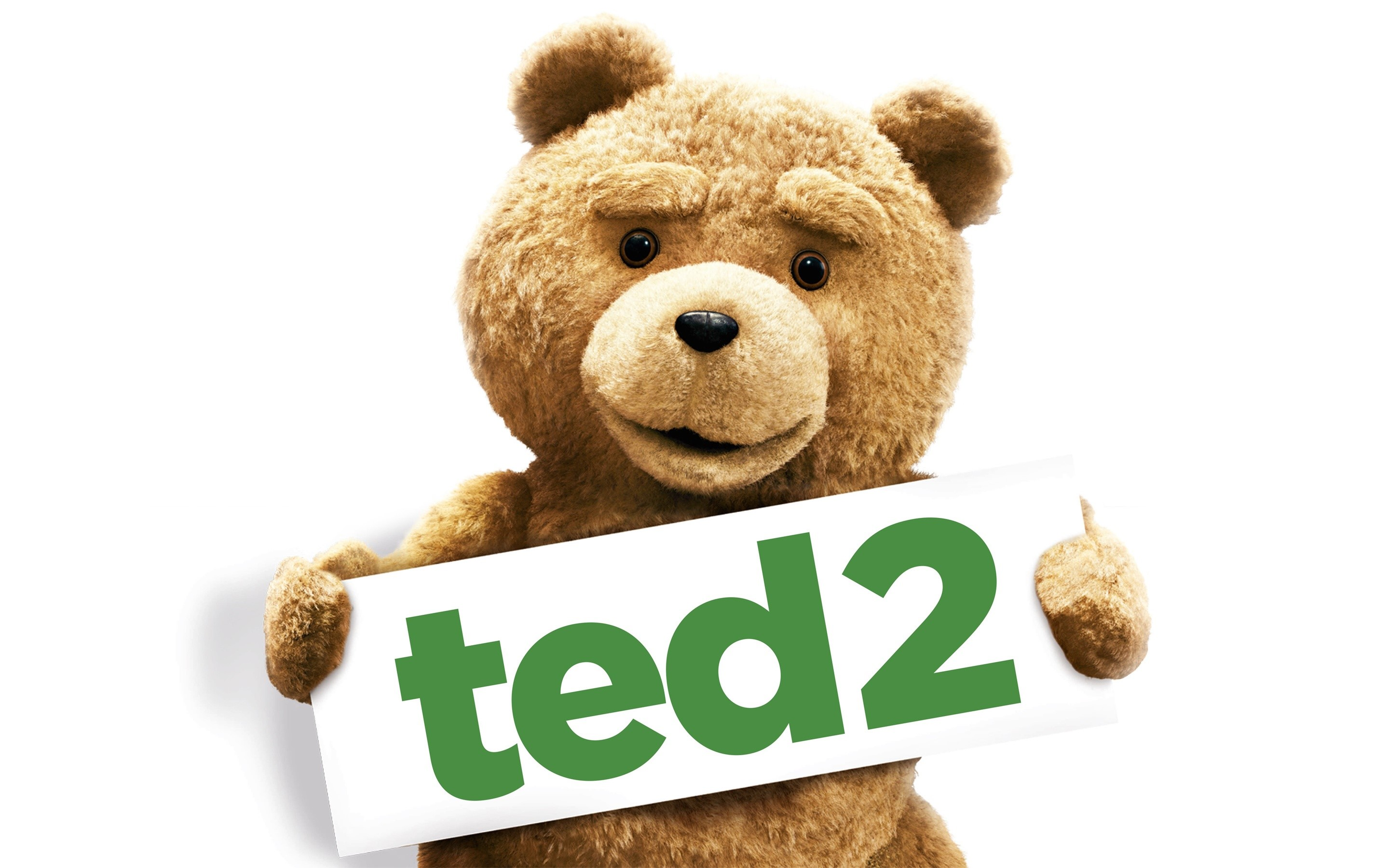 Wallpaper Ted 2