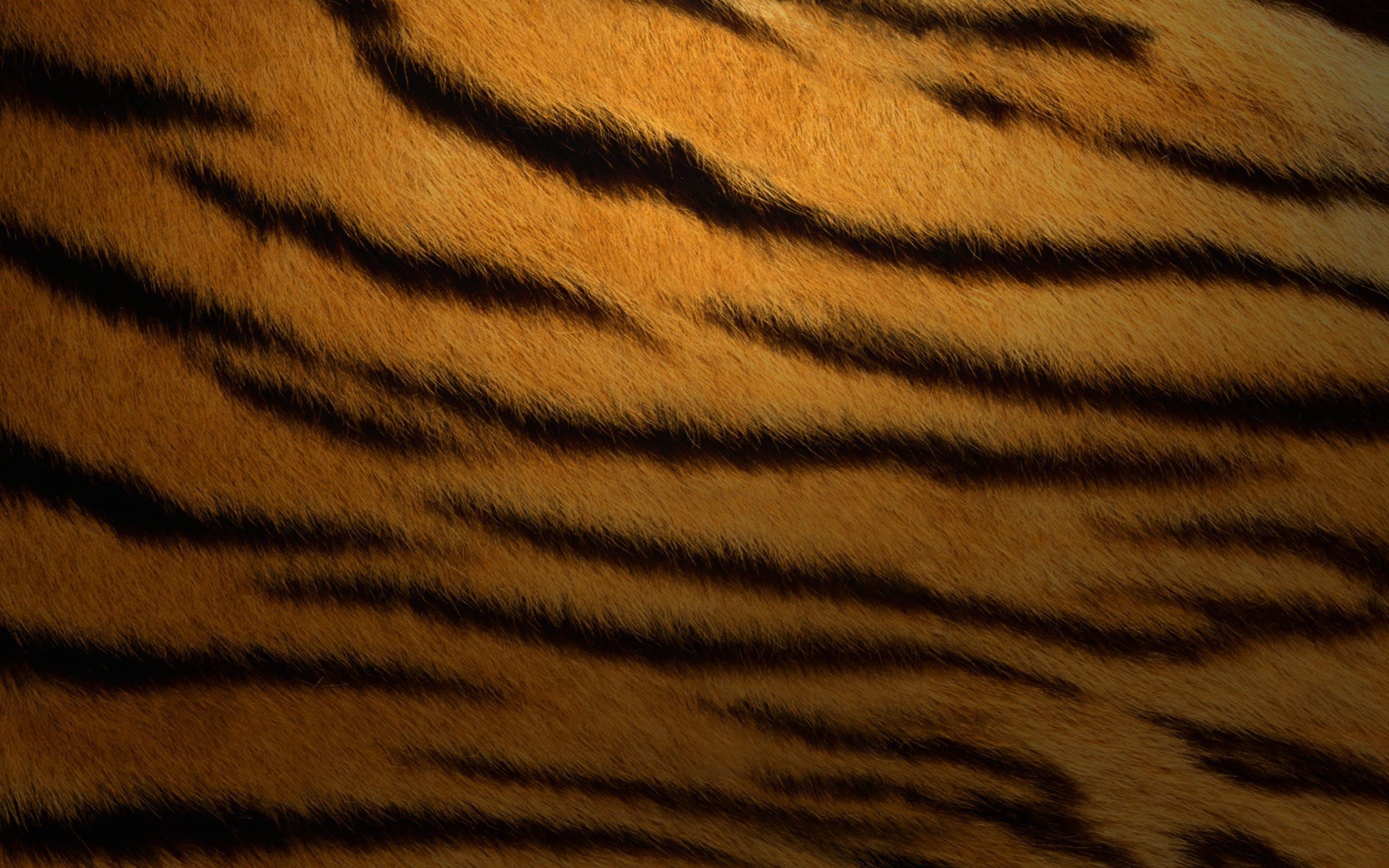 Fondos de pantalla Textura Piel de Tigre