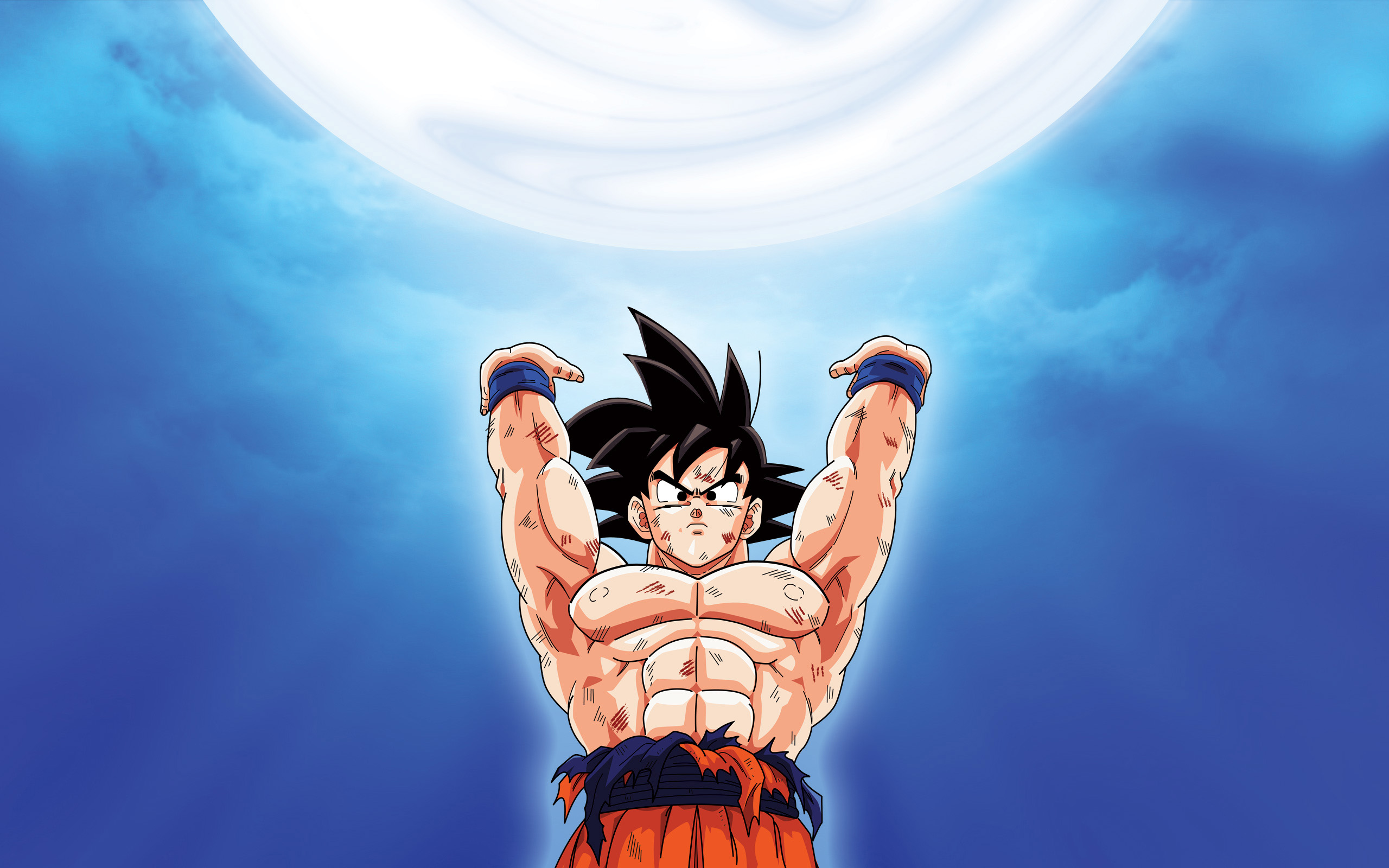 Fondos de pantalla Anime The Spirit Bomb Goku Dragon Ball