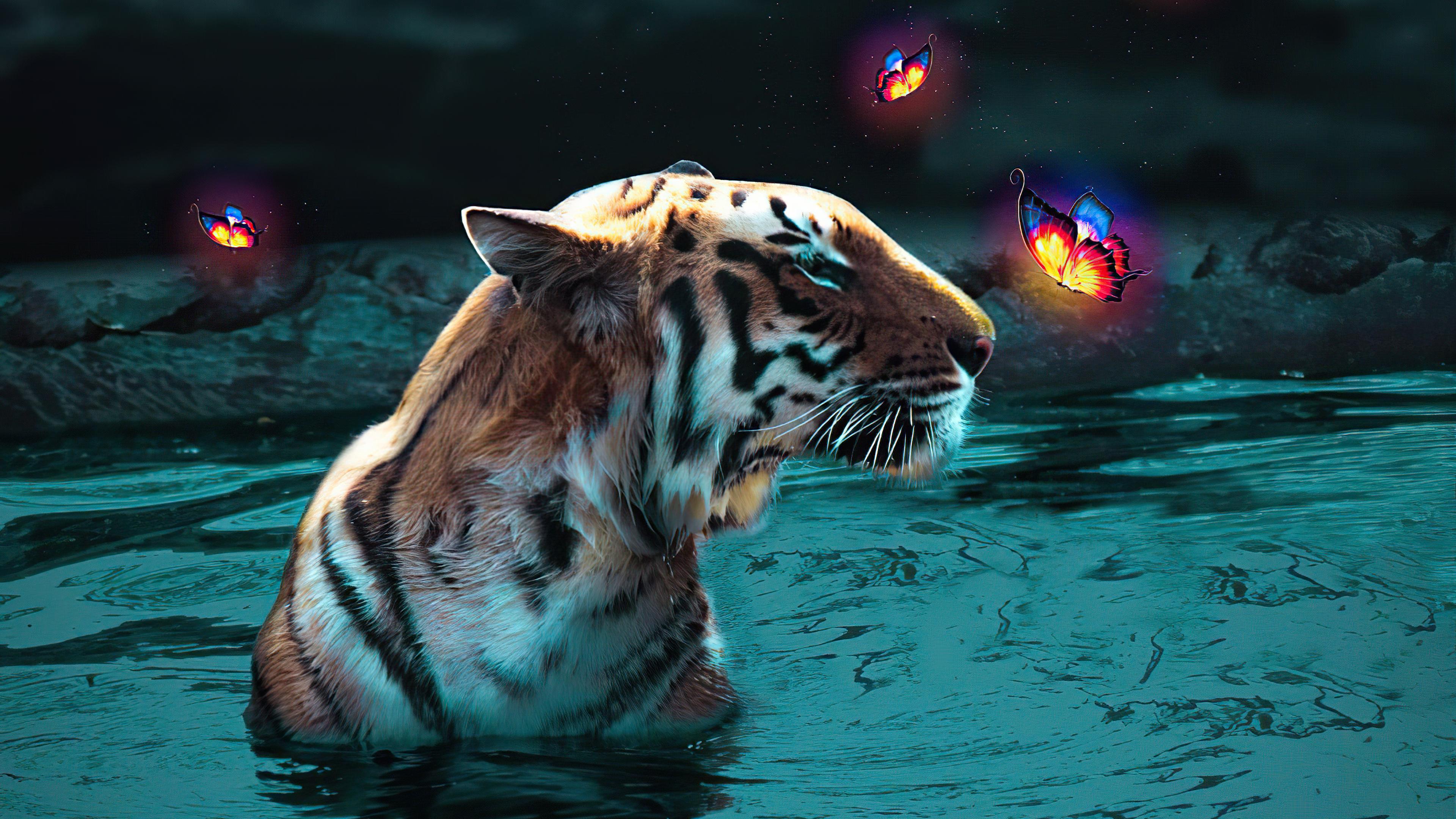 Fondos de pantalla Tigre con mariposas