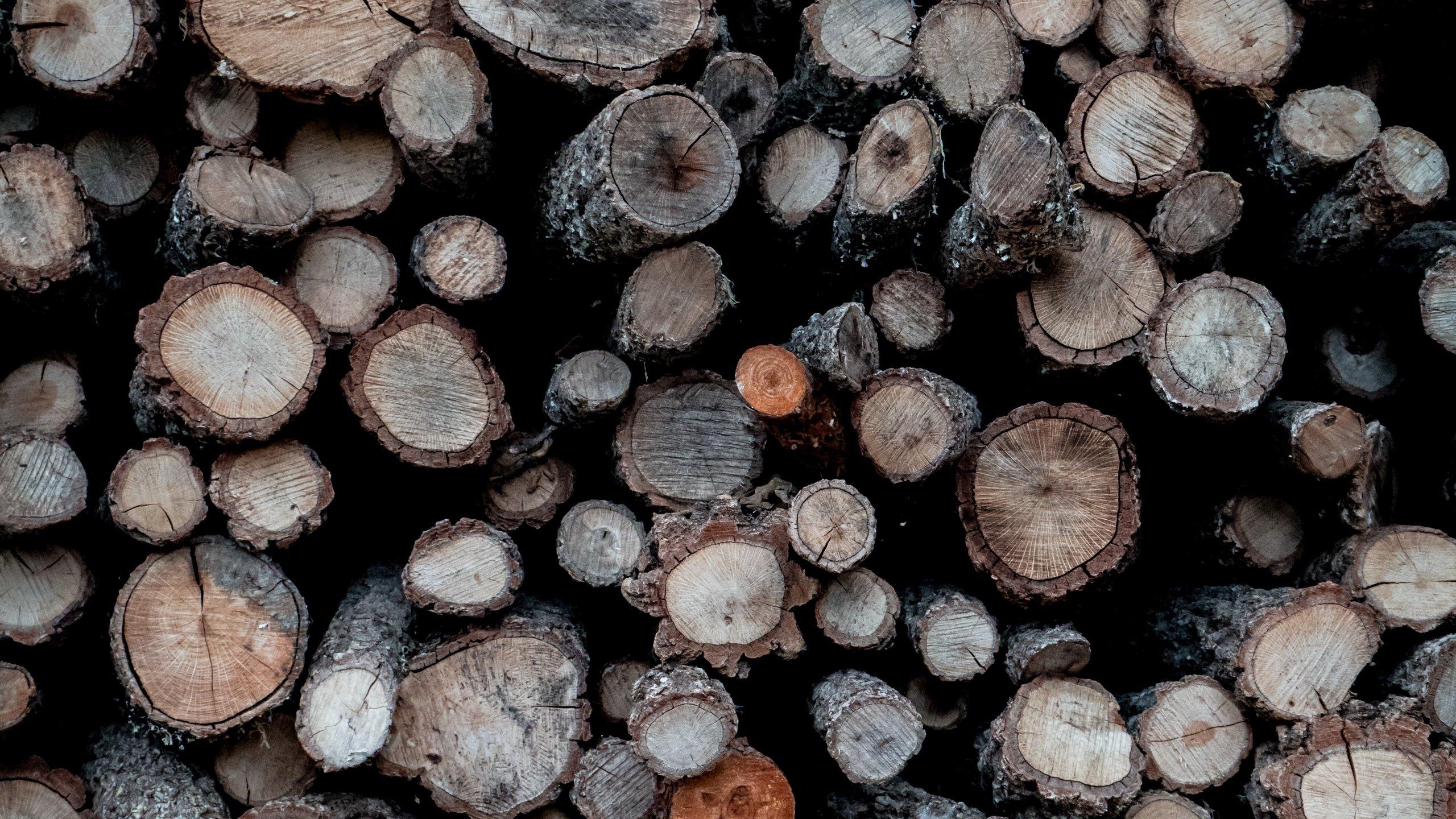 Fondos de pantalla Troncos de madera