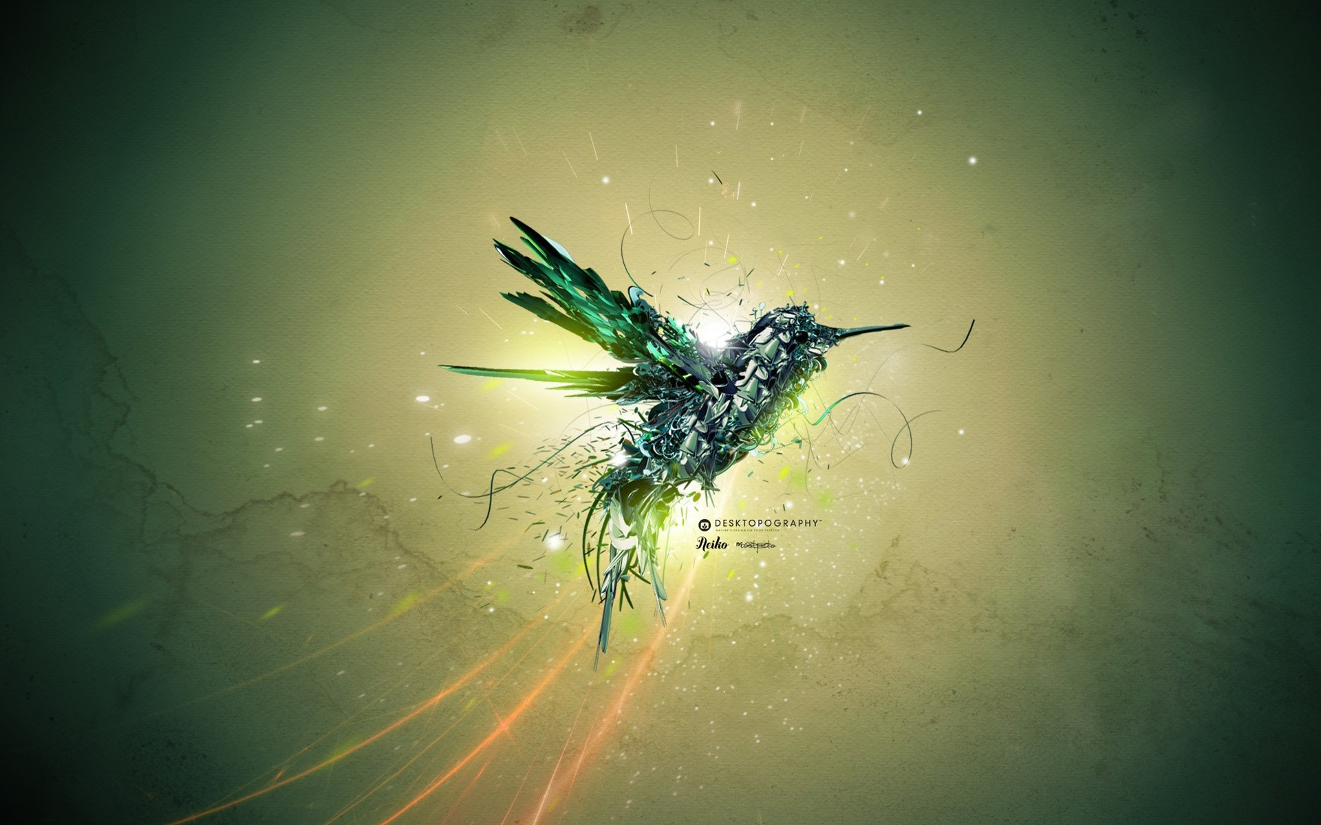 Fondos de pantalla Un ave verde en vuelo