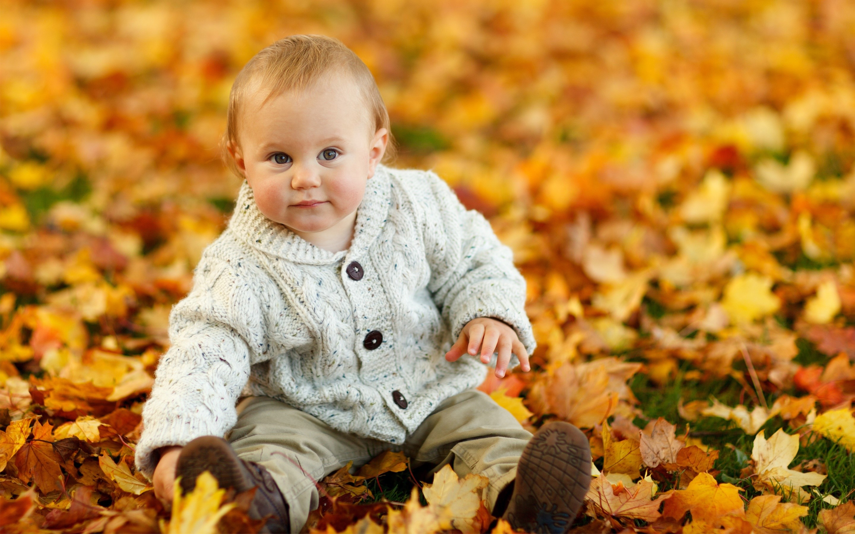 Wallpaper A baby in autumn leaves