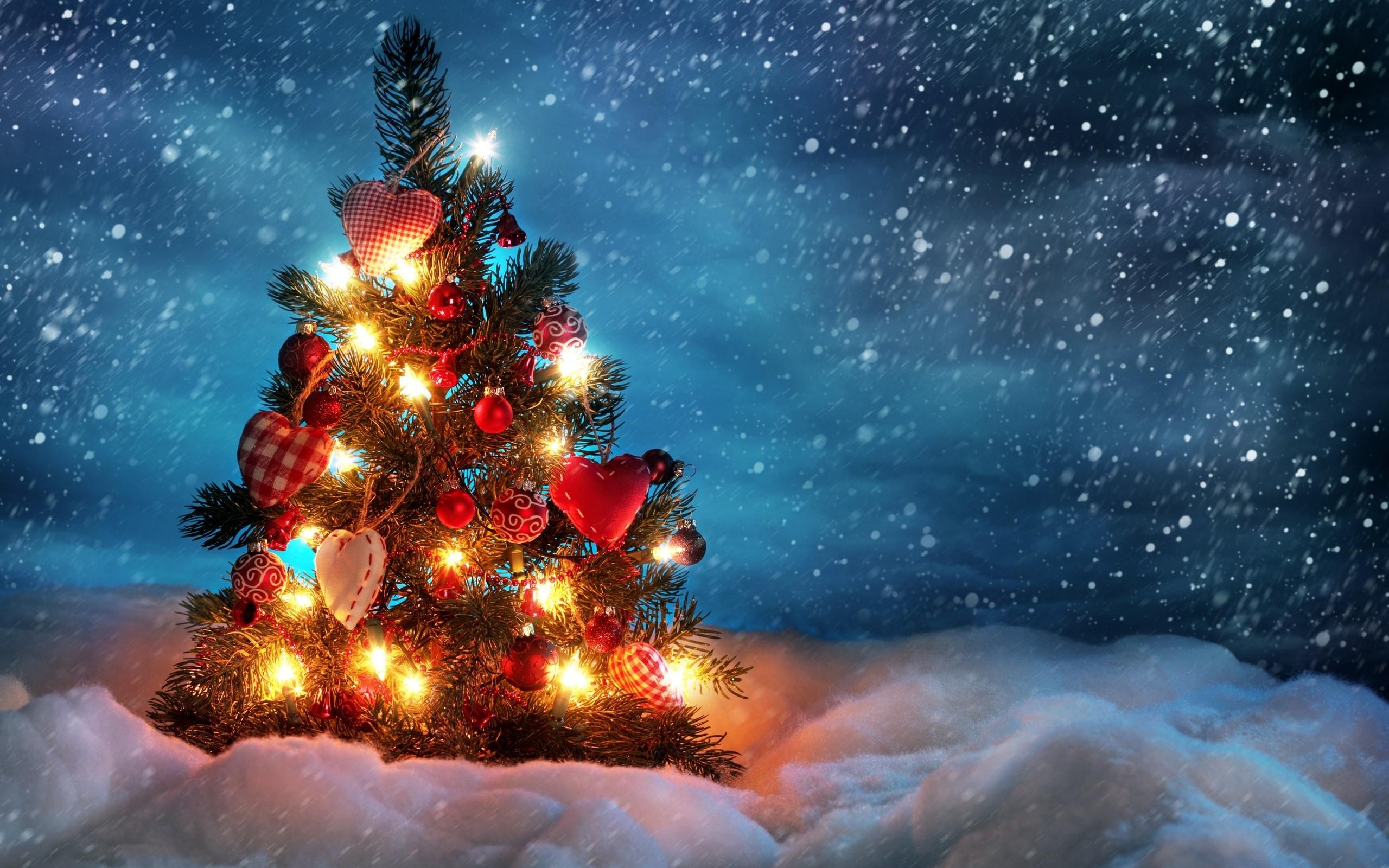 Wallpaper A beautiful Christmas tree