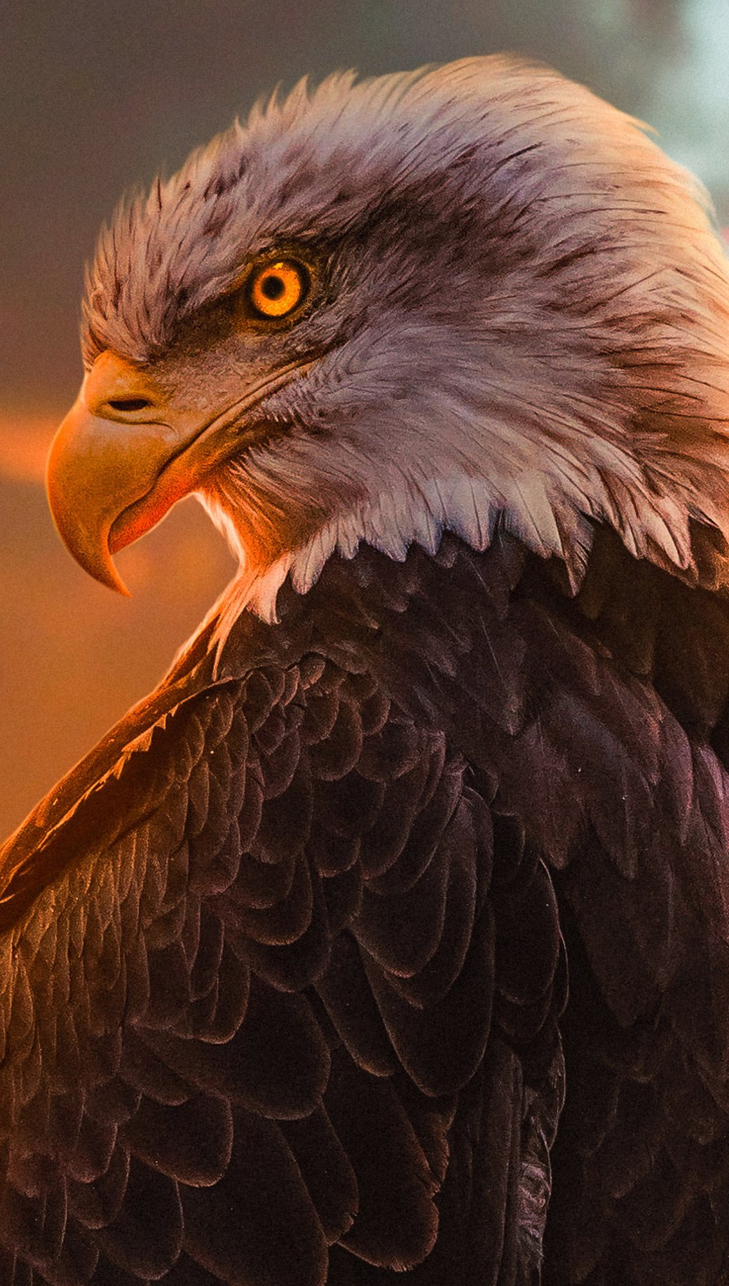 Wallpaper Eagle Vertical