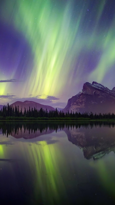 Fondos de pantalla Auroras Polares en bosque junto a lago y montañas Vertical