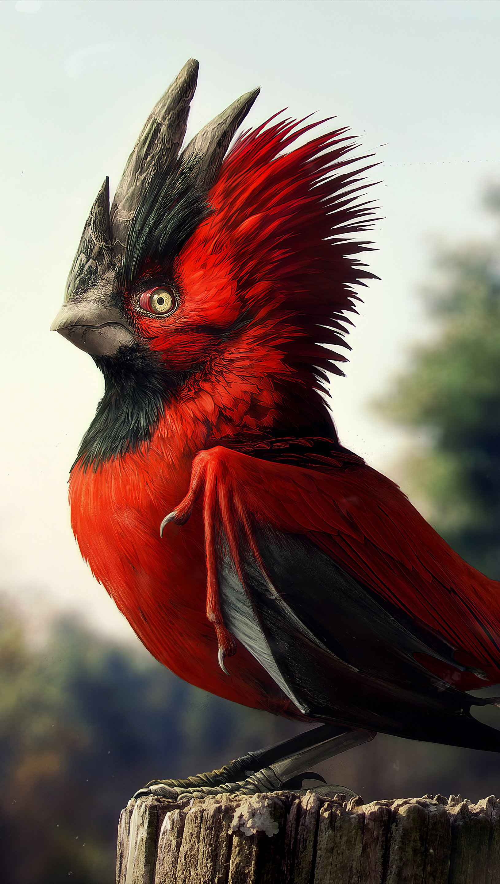 Wallpaper Red Bird Vertical