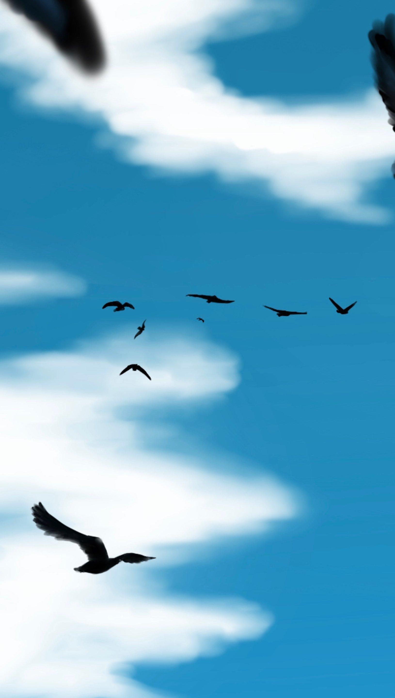 Wallpaper Birds flying in the sky Vertical