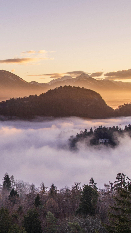 Fondos de pantalla Bosque y montañas entre la niebla Vertical