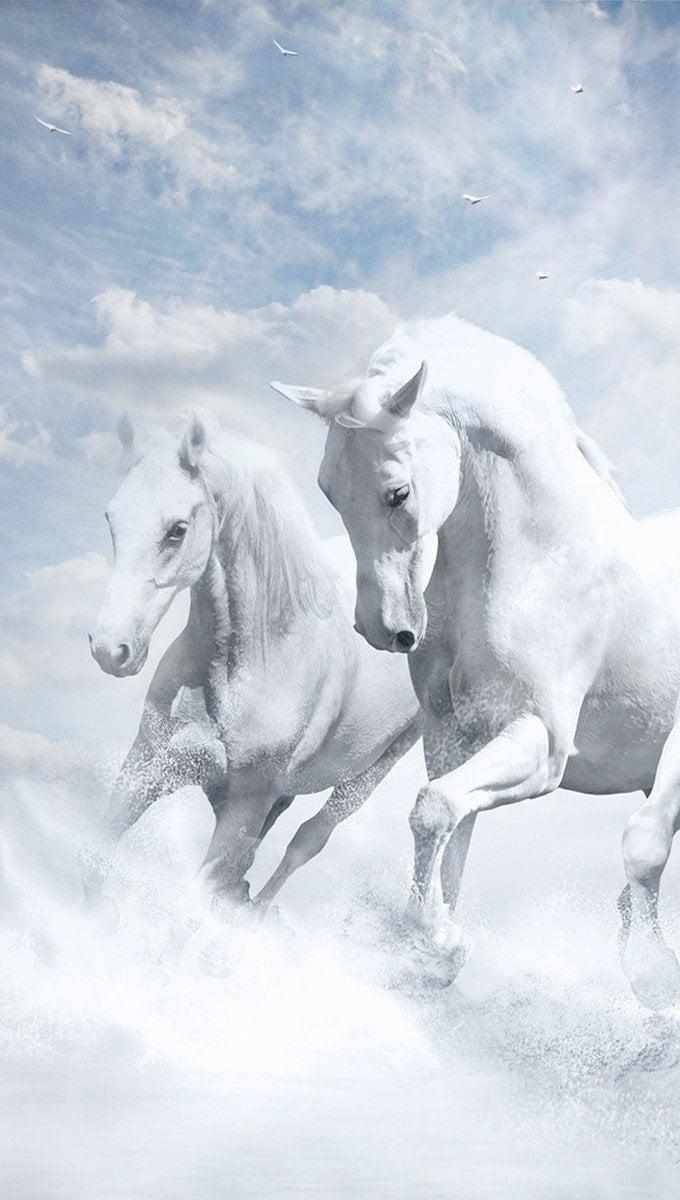 Wallpaper White horses Vertical