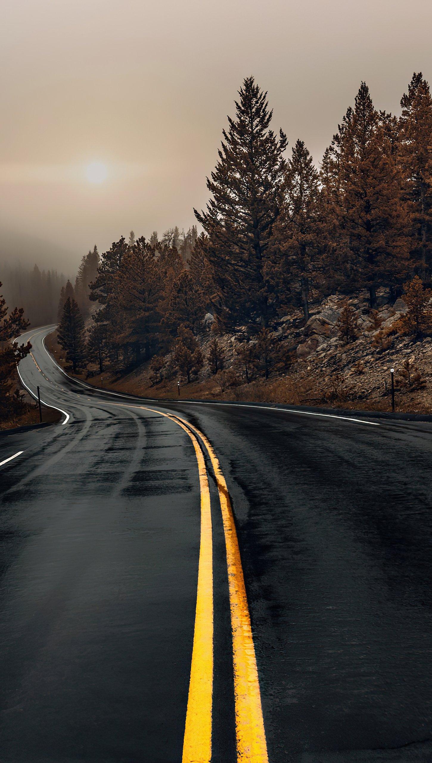 Wallpaper Highway in autumn Vertical