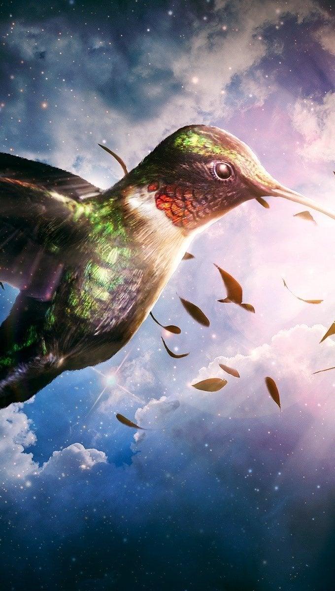 Wallpaper Hummingbird Vertical