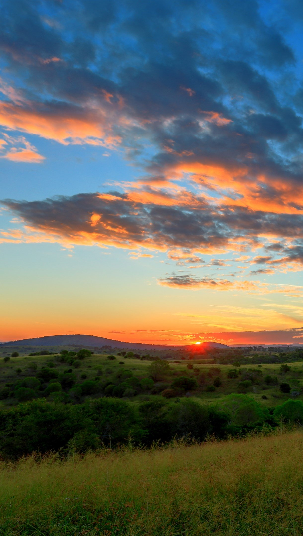 Wallpaper Hills at sunset Vertical