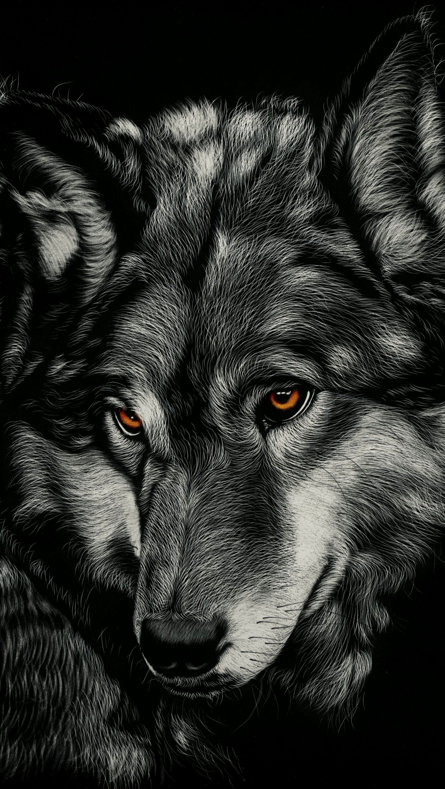 Fondos de pantalla Dibujo lobo Vertical