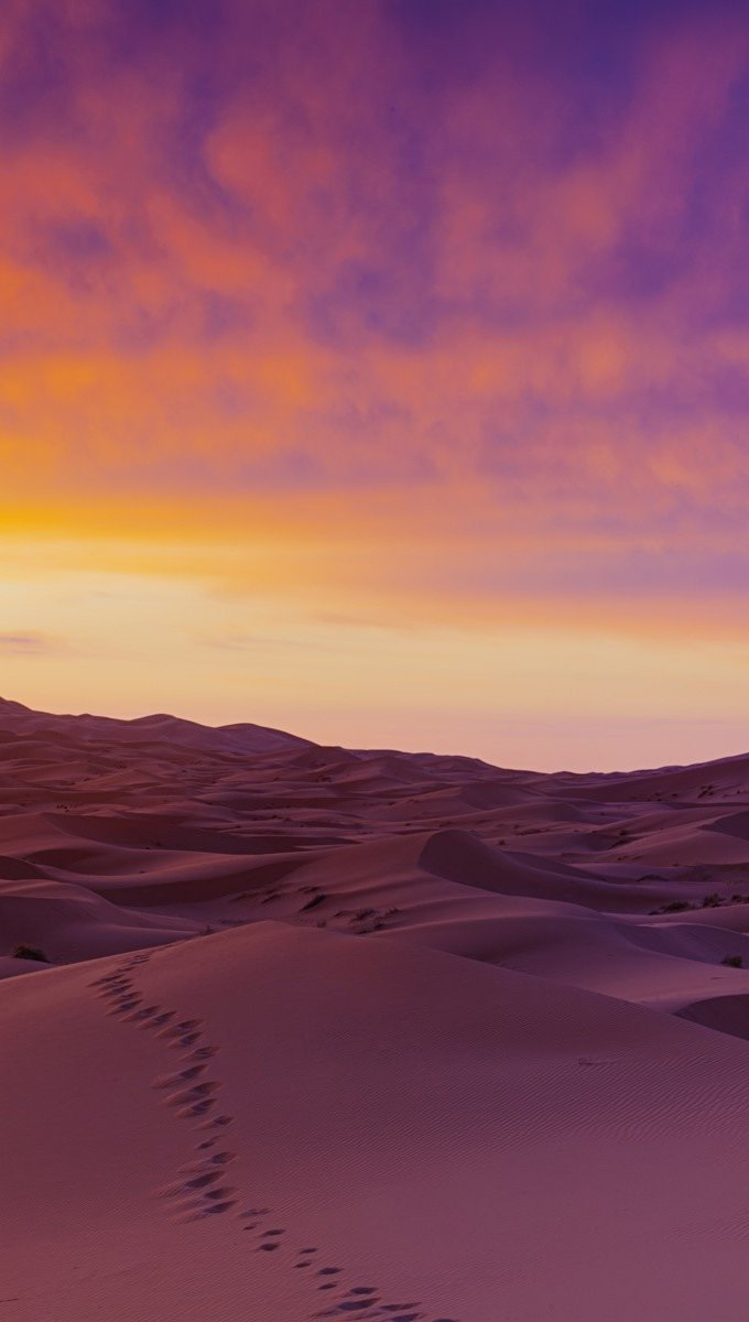 Wallpaper Sand dunes in the Sahara Vertical
