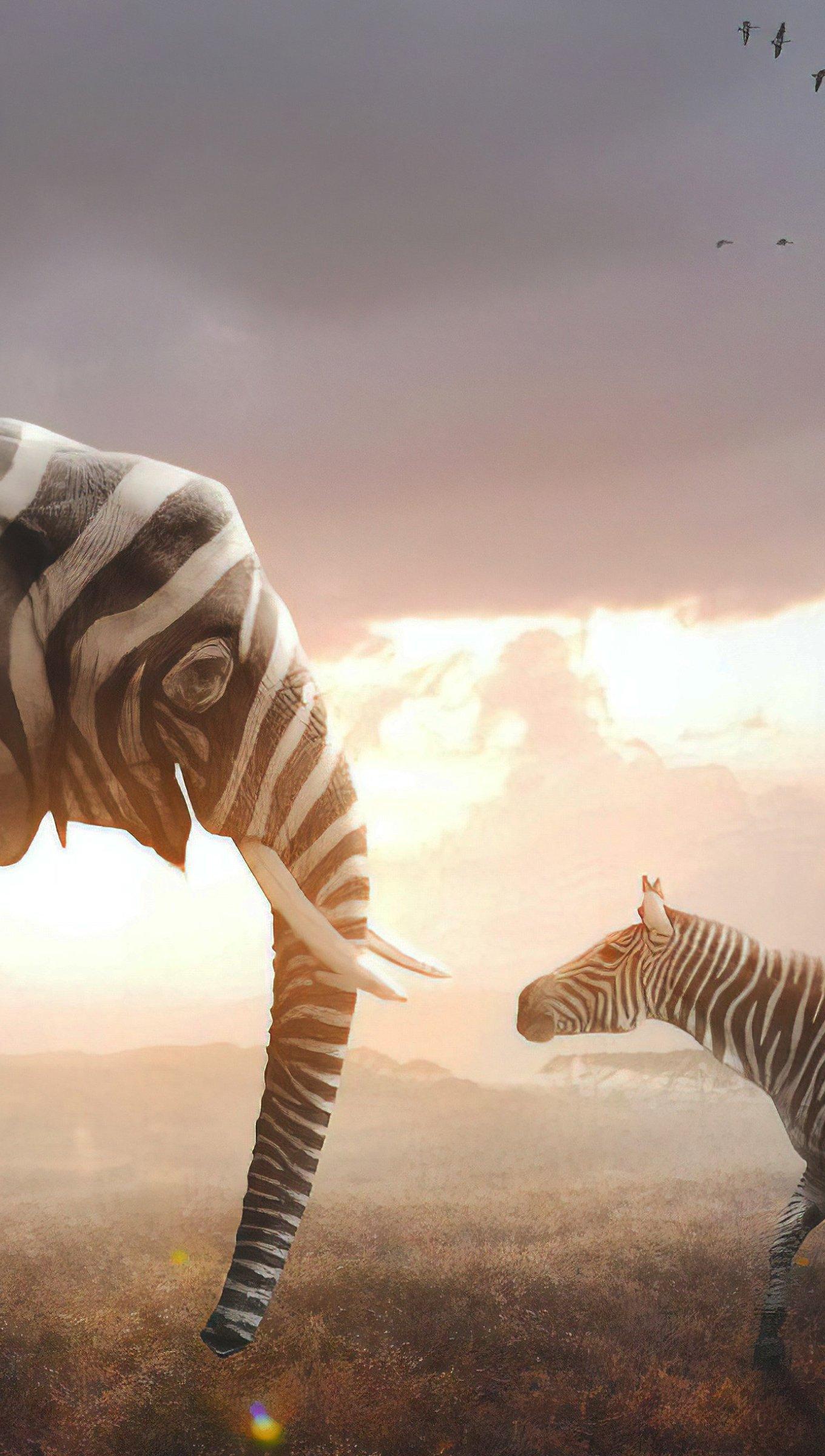 Fondos de pantalla Elefante y Cebra Vertical