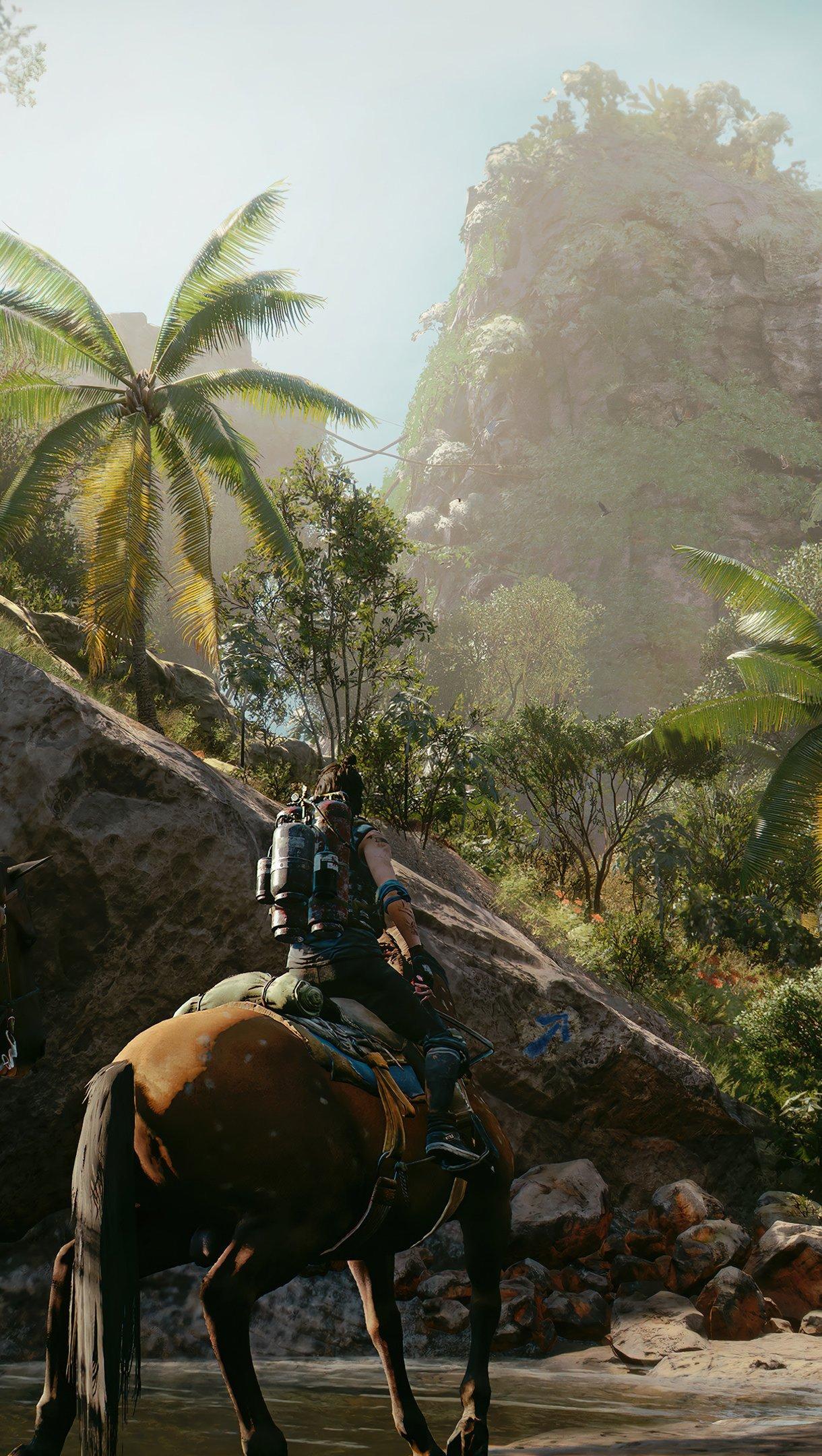 Fondos de pantalla Far Cry 6 Vertical