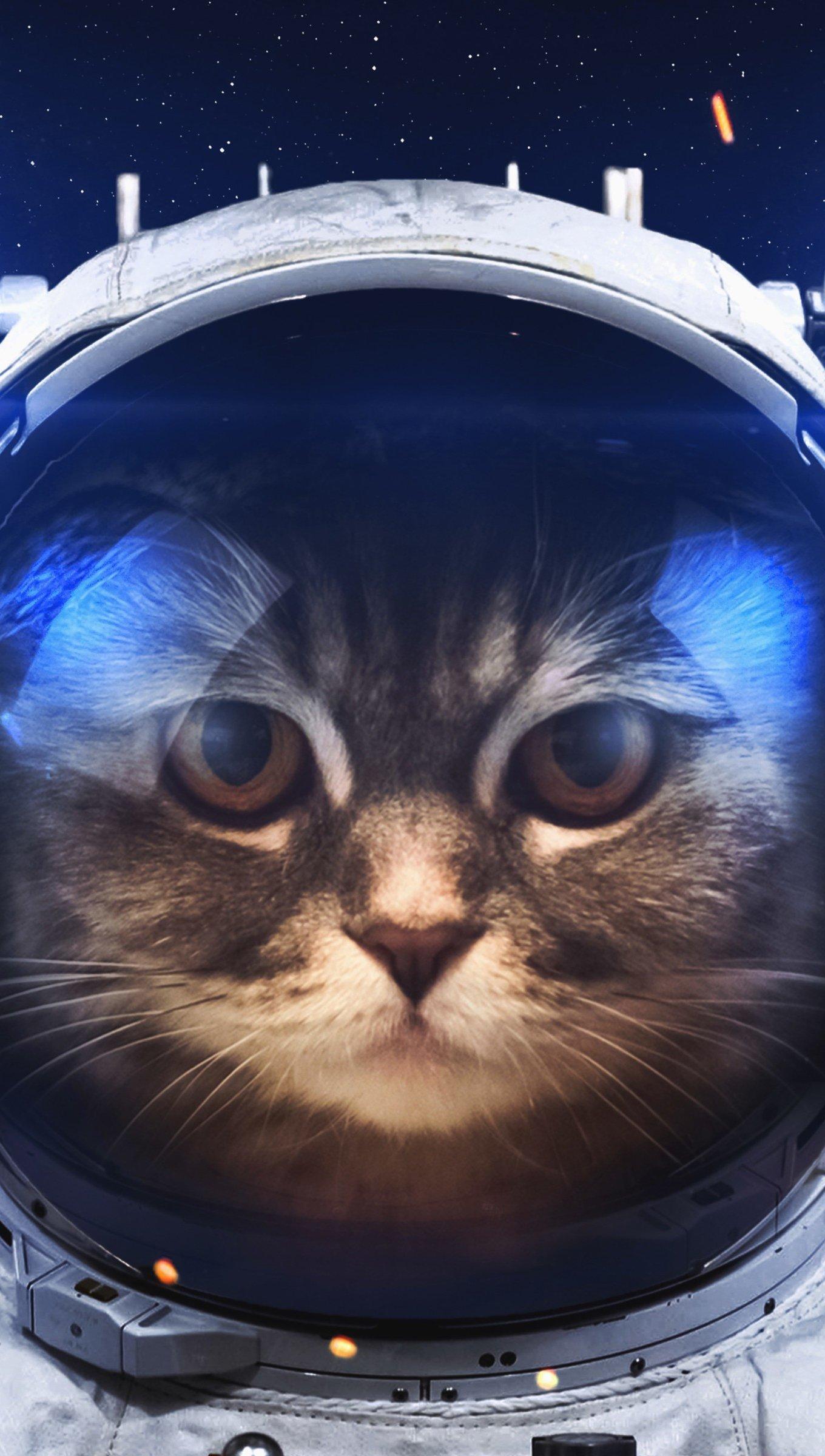 Wallpaper Astronaut Cat Vertical