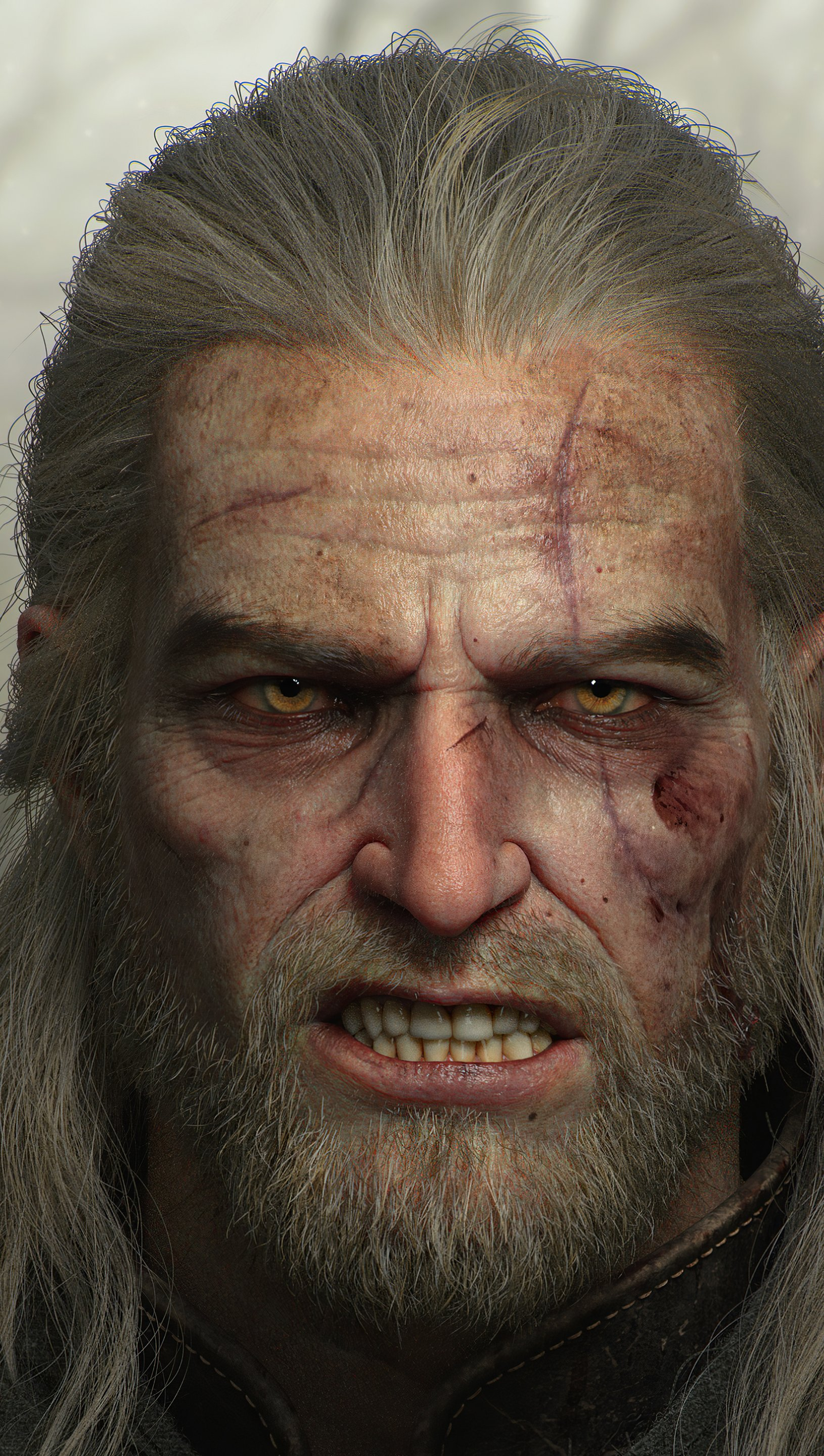 Fondos de pantalla Geralt de Rivia The Witcher 3 Vertical