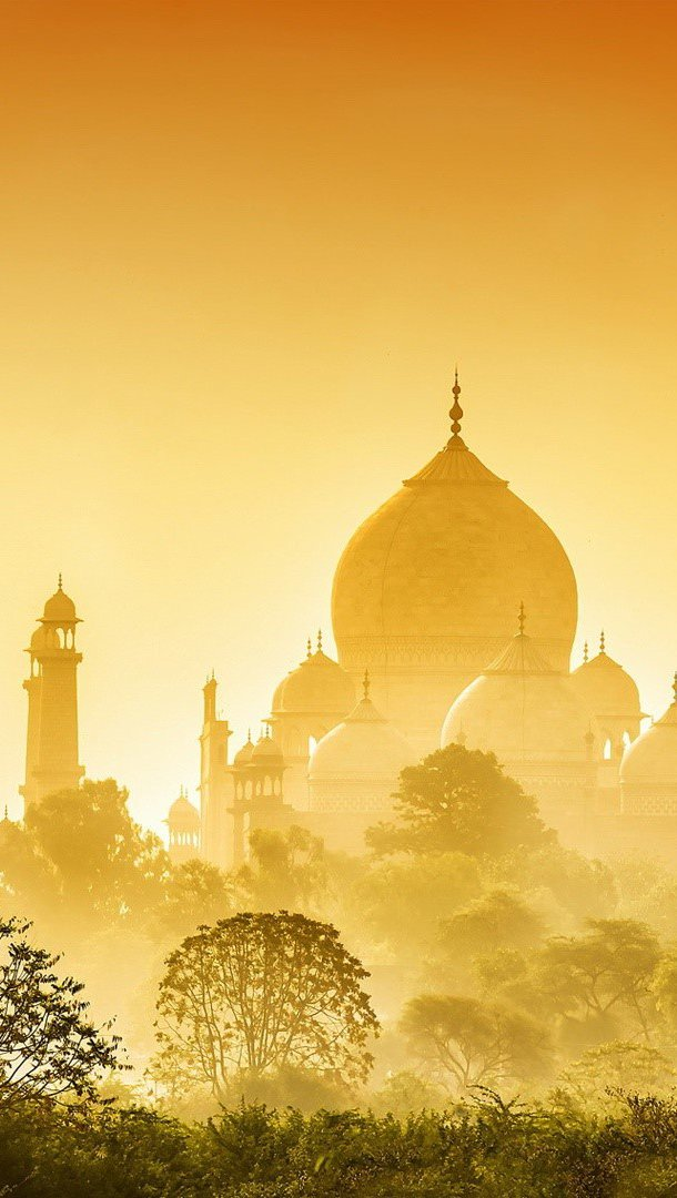 Wallpaper Golden taj mahal Vertical