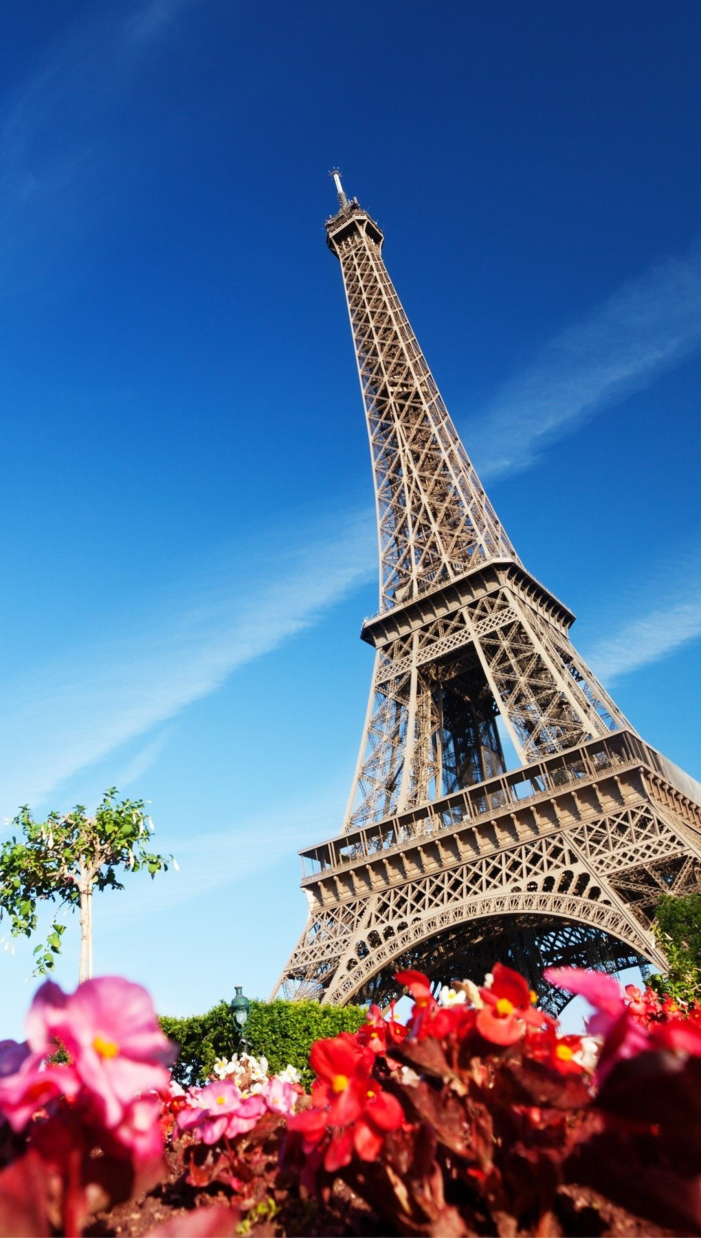 Wallpaper The Eiffel tower with flowers Vertical