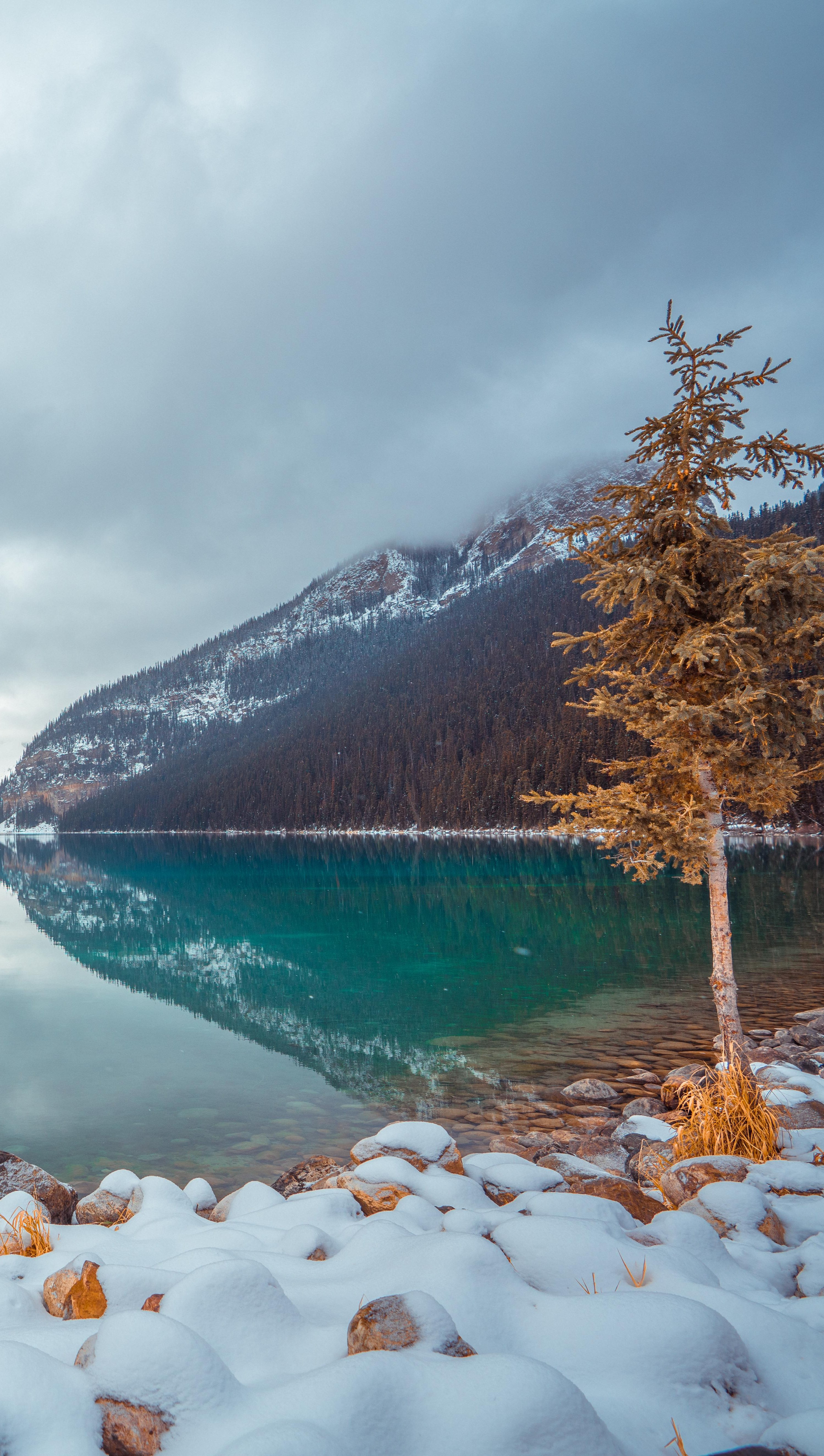 Fondos de pantalla Lago con niebla Louise en Canada Vertical