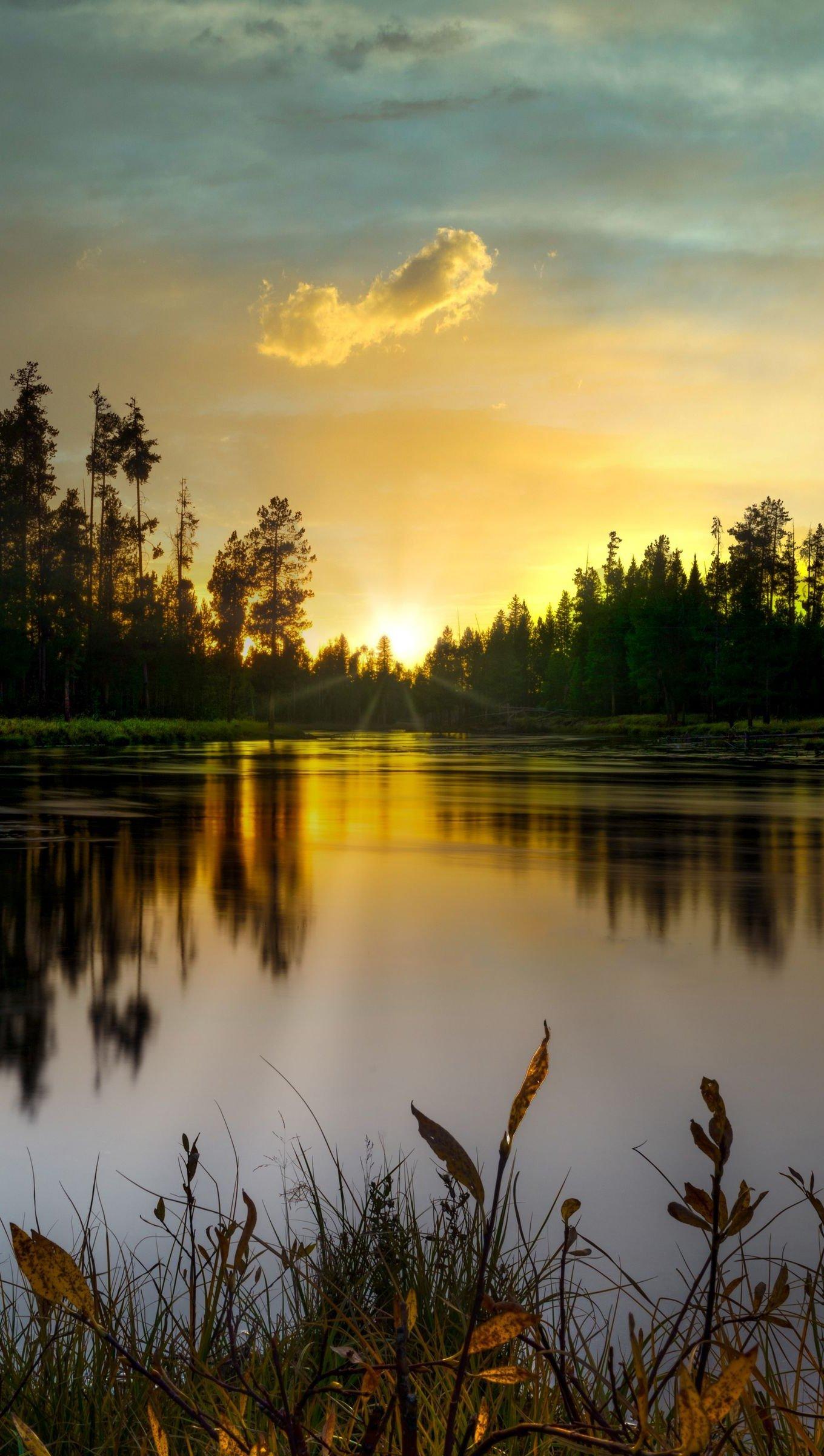 Fondos de pantalla Lago en bosque al atardecer Vertical