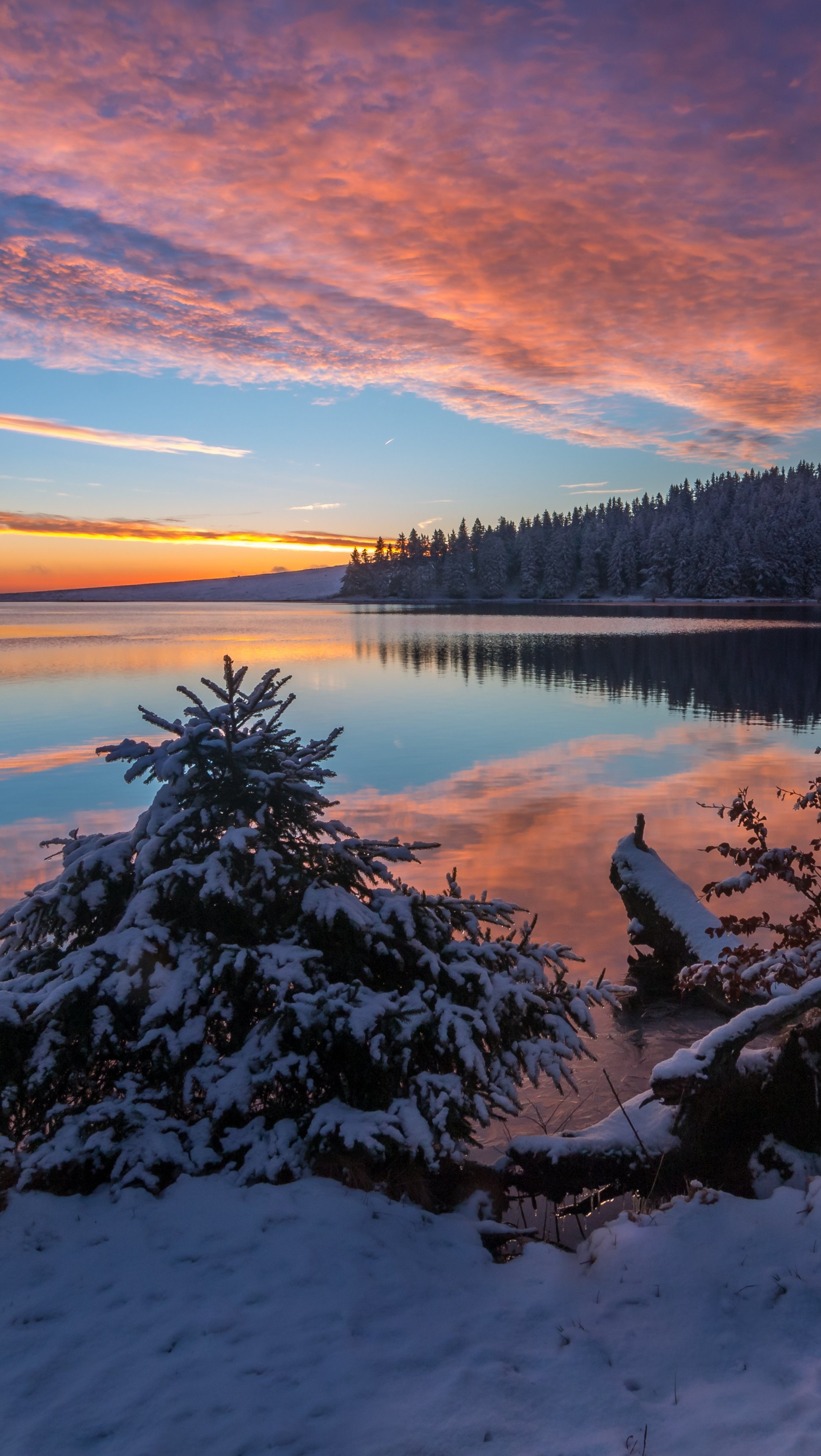 Wallpaper Lake in the snow at sunset Vertical