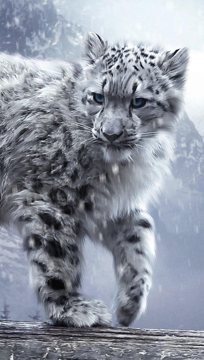 Wallpaper White leopard Vertical
