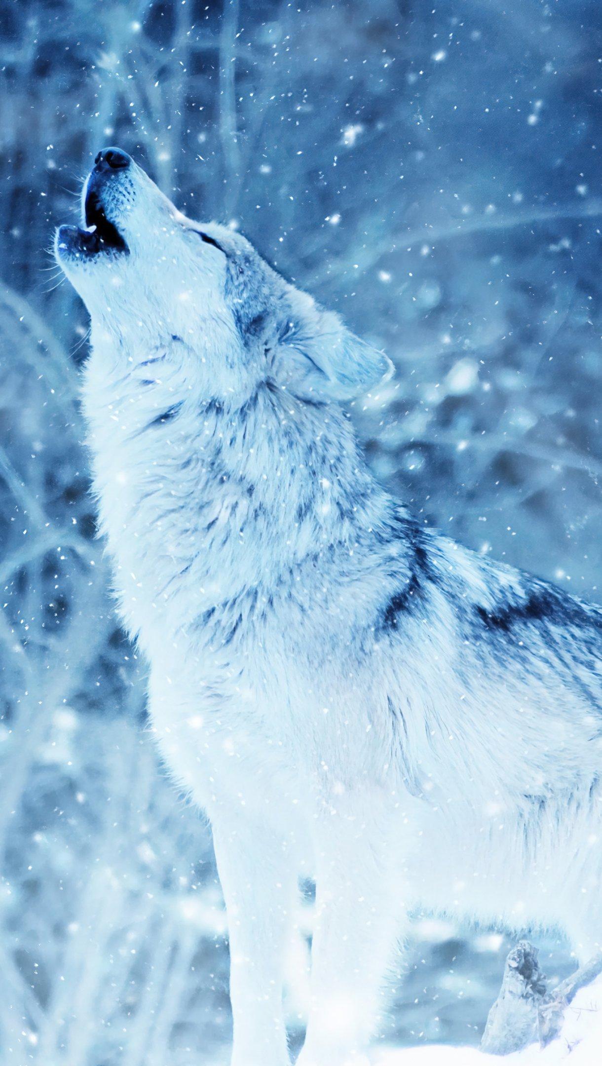 Fondos de pantalla Lobo aullando en el invierno Vertical