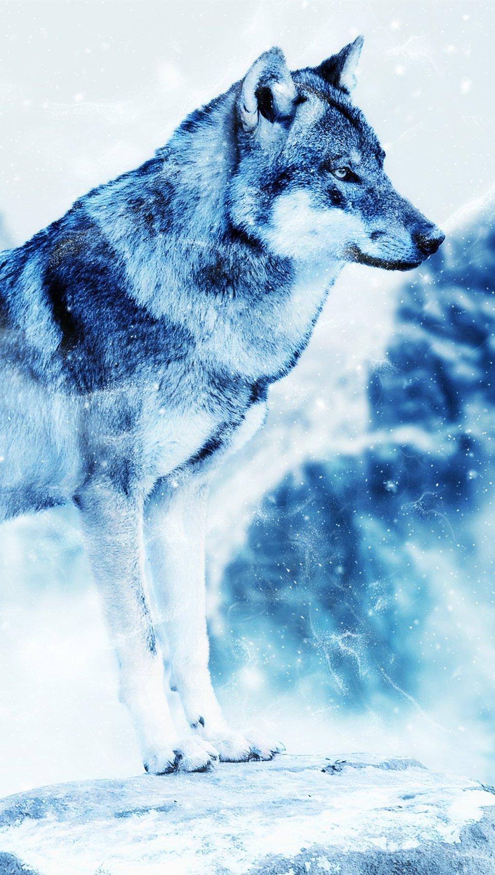 Wallpaper Wolf in winter Vertical