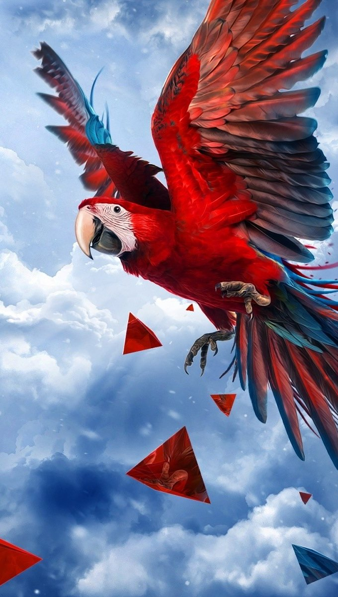 Wallpaper Parrot flying Vertical