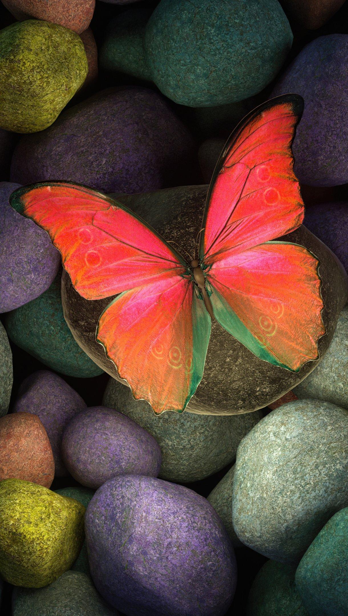 Fondos de pantalla Mariposa en piedras de colores Vertical
