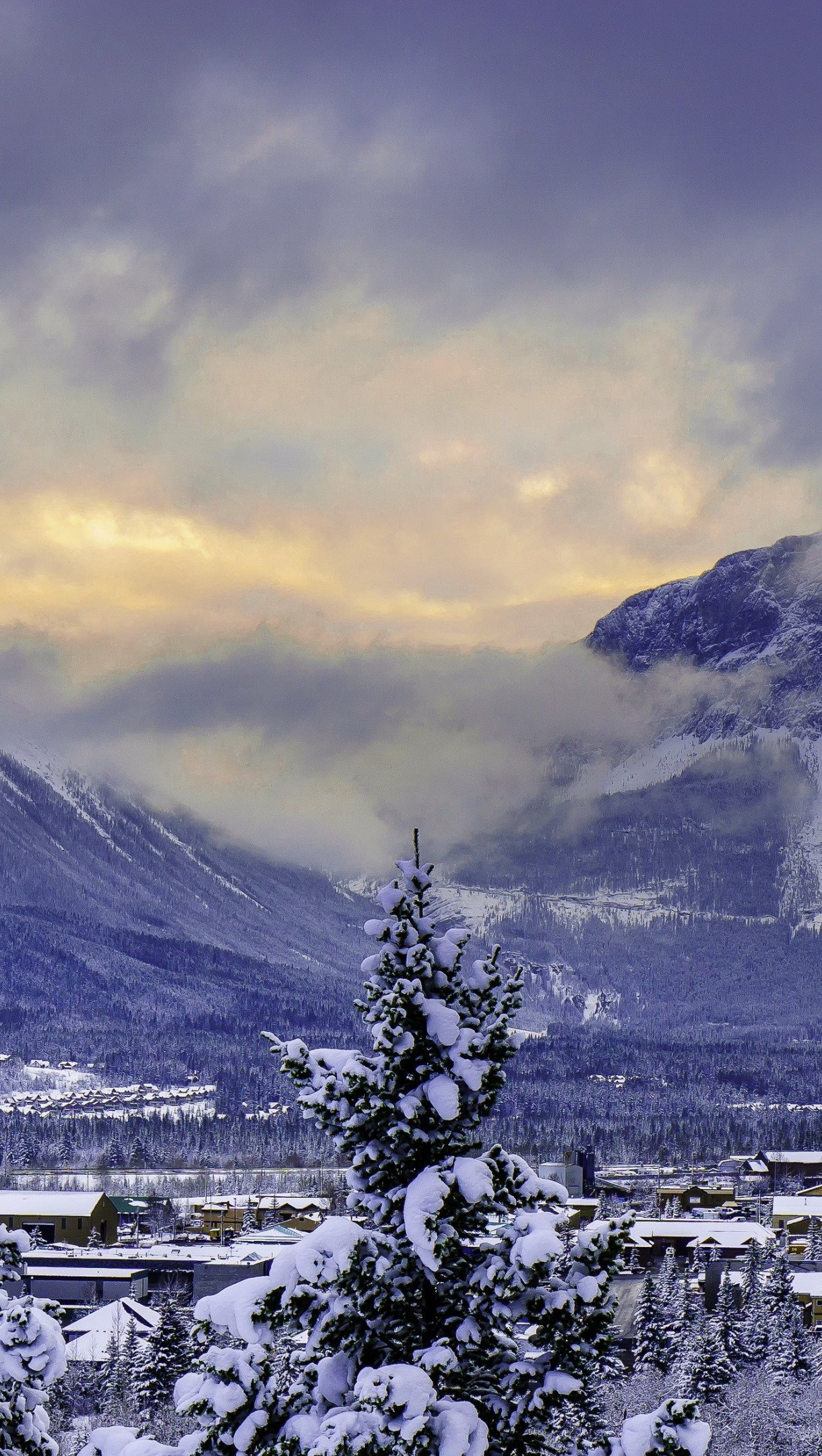 Fondos de pantalla Montaña Alberta Banff en Invierno Vertical