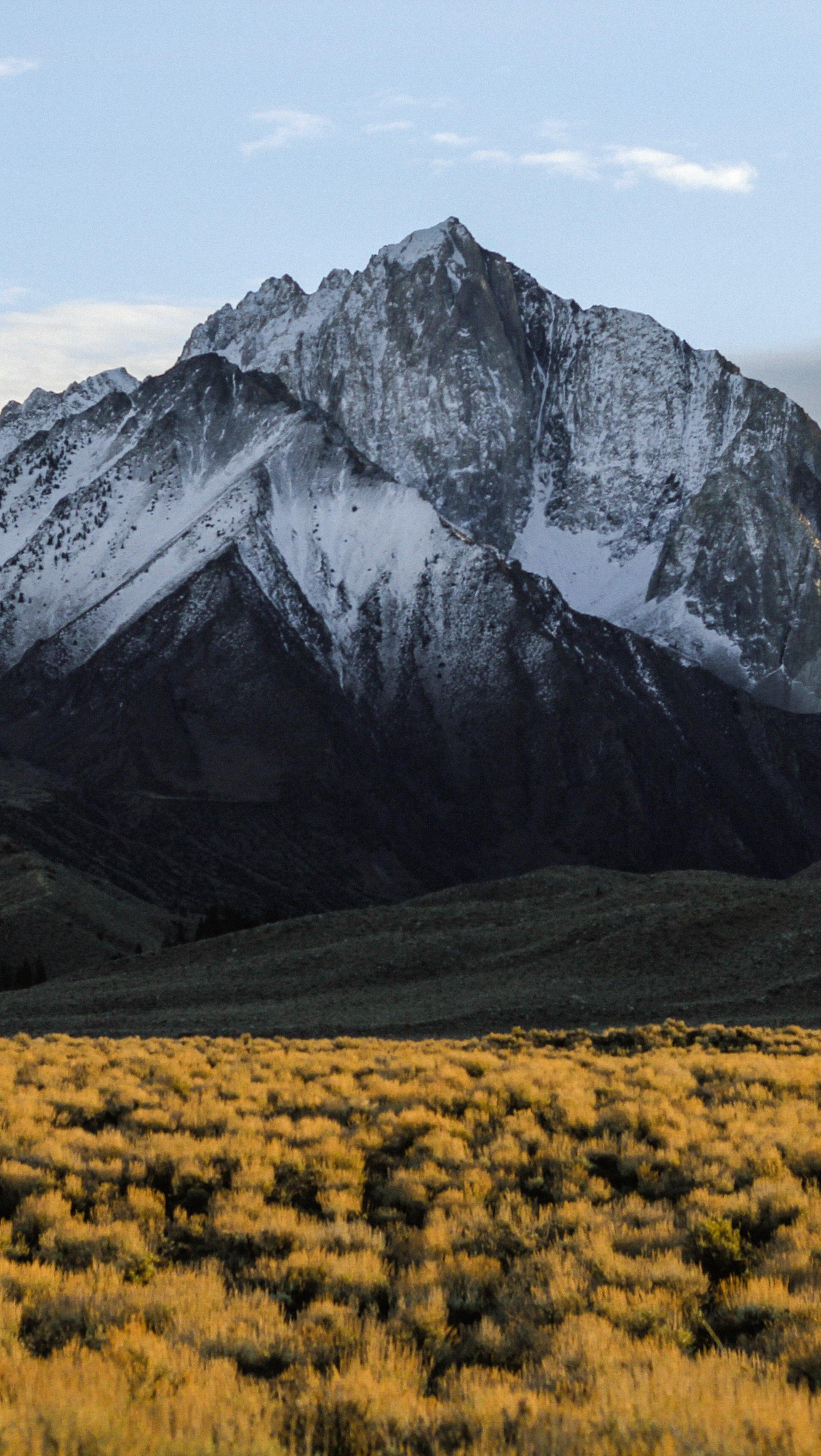 Fondos de pantalla Montaña con nieve en el verano Vertical