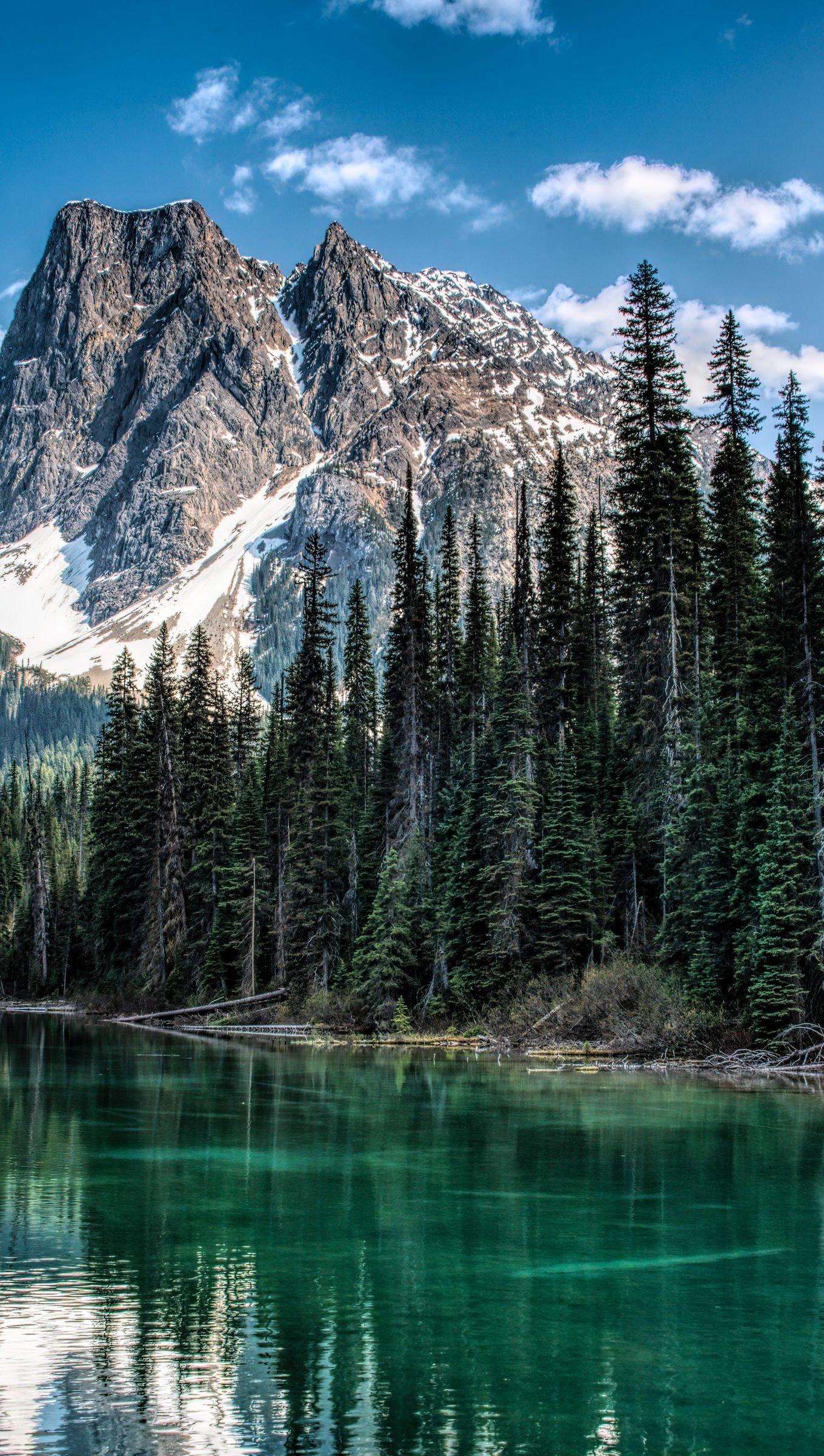 Mountain in forest Wallpaper 4k Ultra HD ID:5769