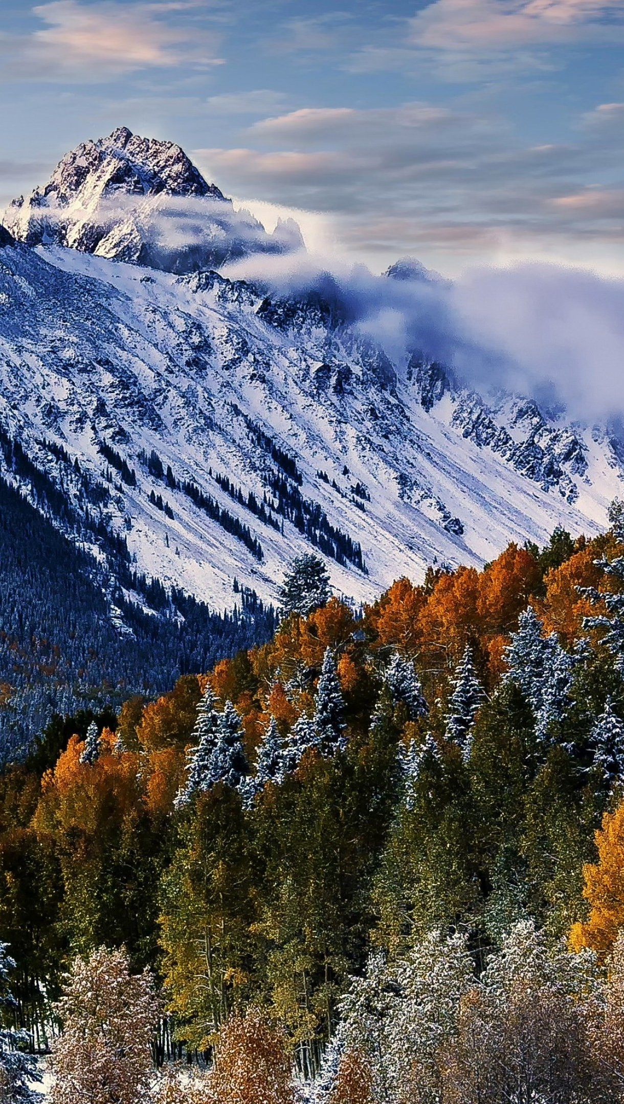 Wallpaper Mountains in Sneffels forest Vertical