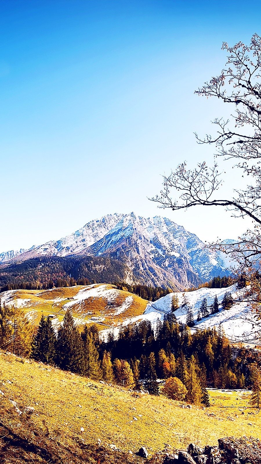 Wallpaper Mountains in autumn Vertical
