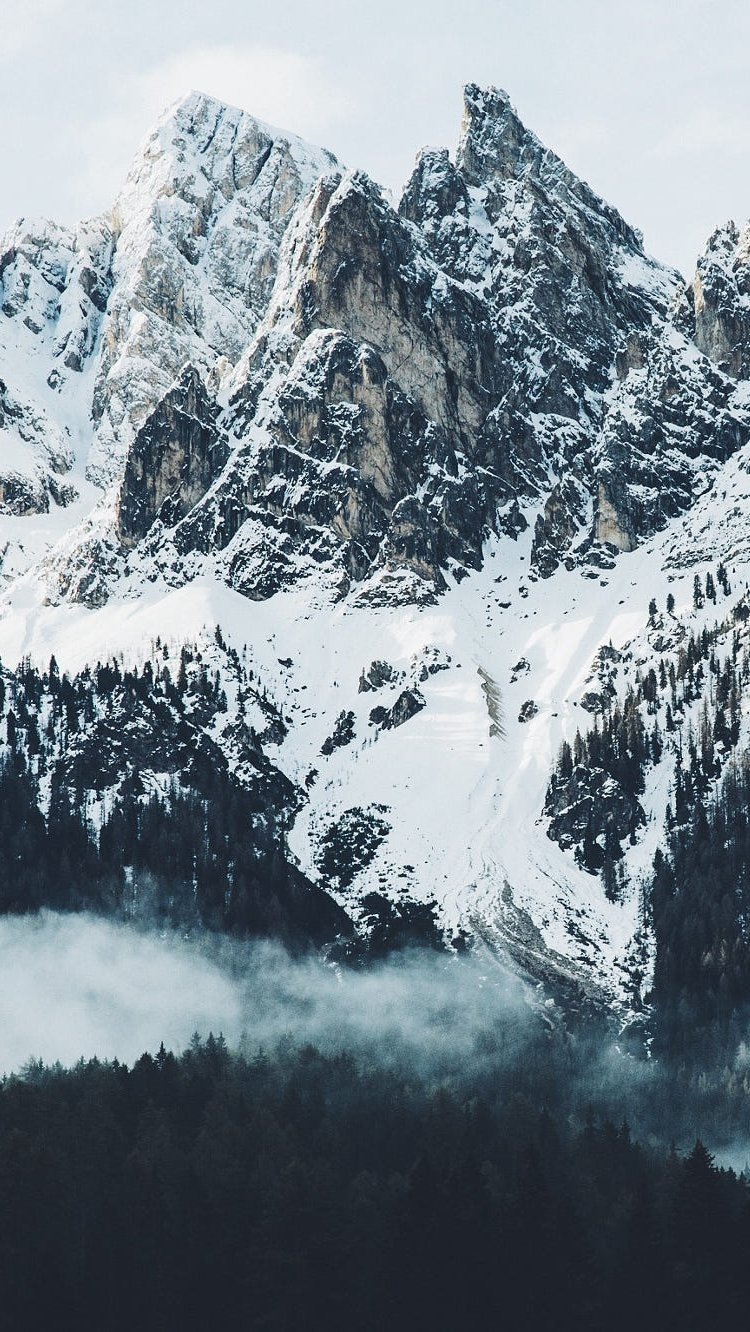 Wallpaper Snowy mountains with forest Vertical