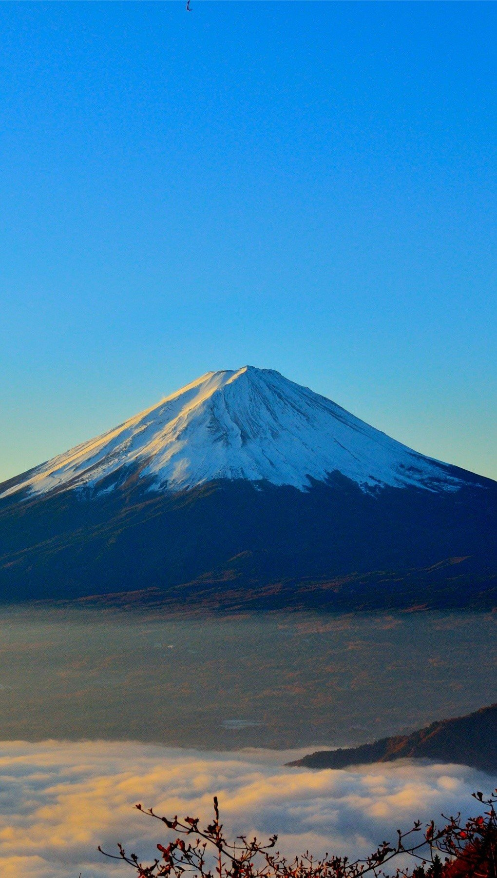 Wallpaper Mount Fuji Vertical
