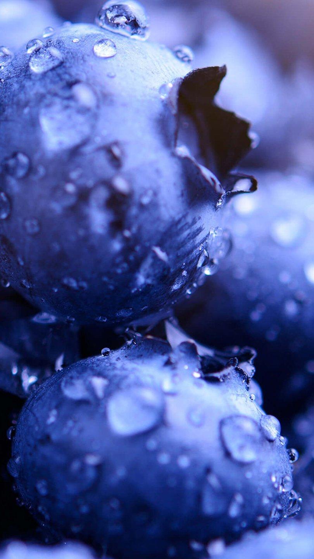 Fondos de pantalla Moras azules con gotas de agua Vertical