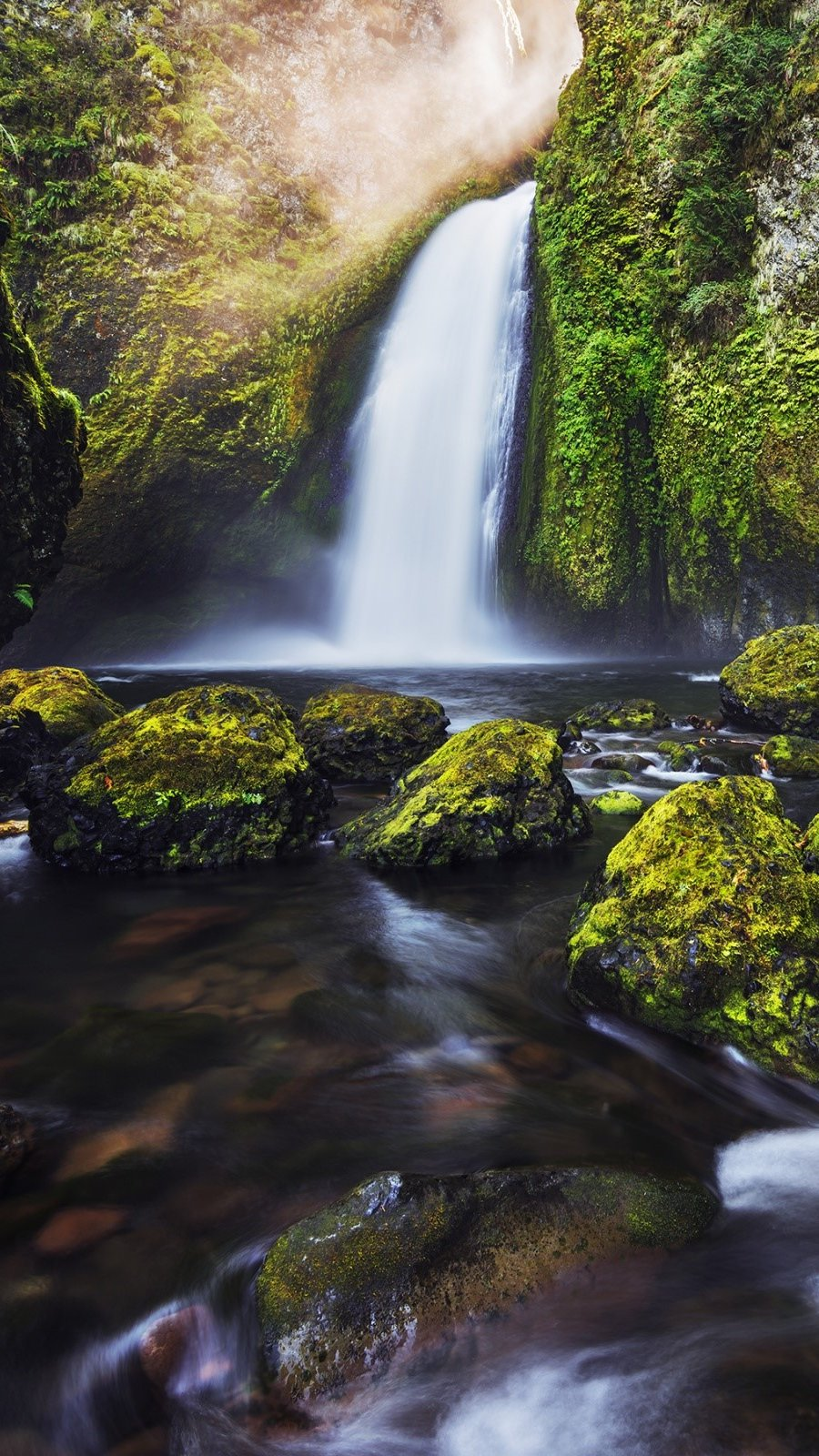 Wallpaper Moss in a waterfall Vertical